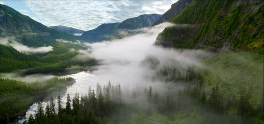 The beauty of the Great Bear Rainforest as seen from high above.