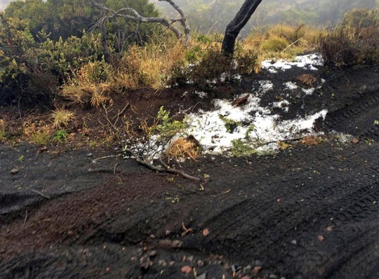 Black volcano burner covers dust dust at the Polipoli State Recreation area on Haleakala slopes near Kula on the Hawaiian island of Maui on February 11, 2019.