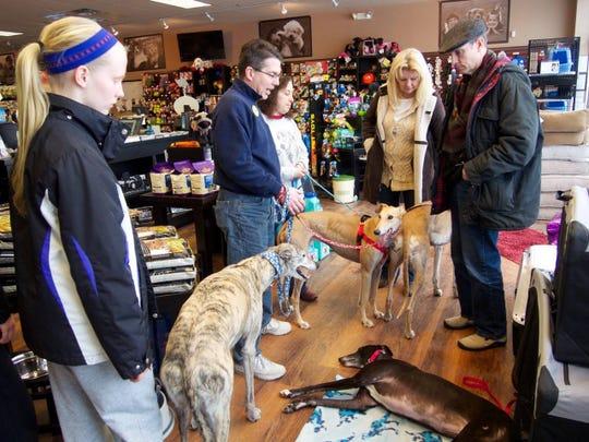 New Jersey Greyhound Adoption Program (NJGAP) will host a Meet & Greet at PetValu, Flemington Circle Shopping Center, 276 Route 202/31, Flemington, from 2 to 4 p.m.on Sunday, Feb.17.