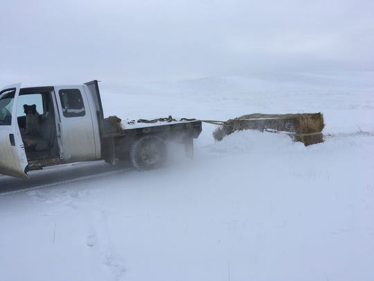 When the weather chills all of Lisa Schmidt's diesel motors, she counts on her flatbed pickup to get hay to her livestock. Geometry and physics help, too.
