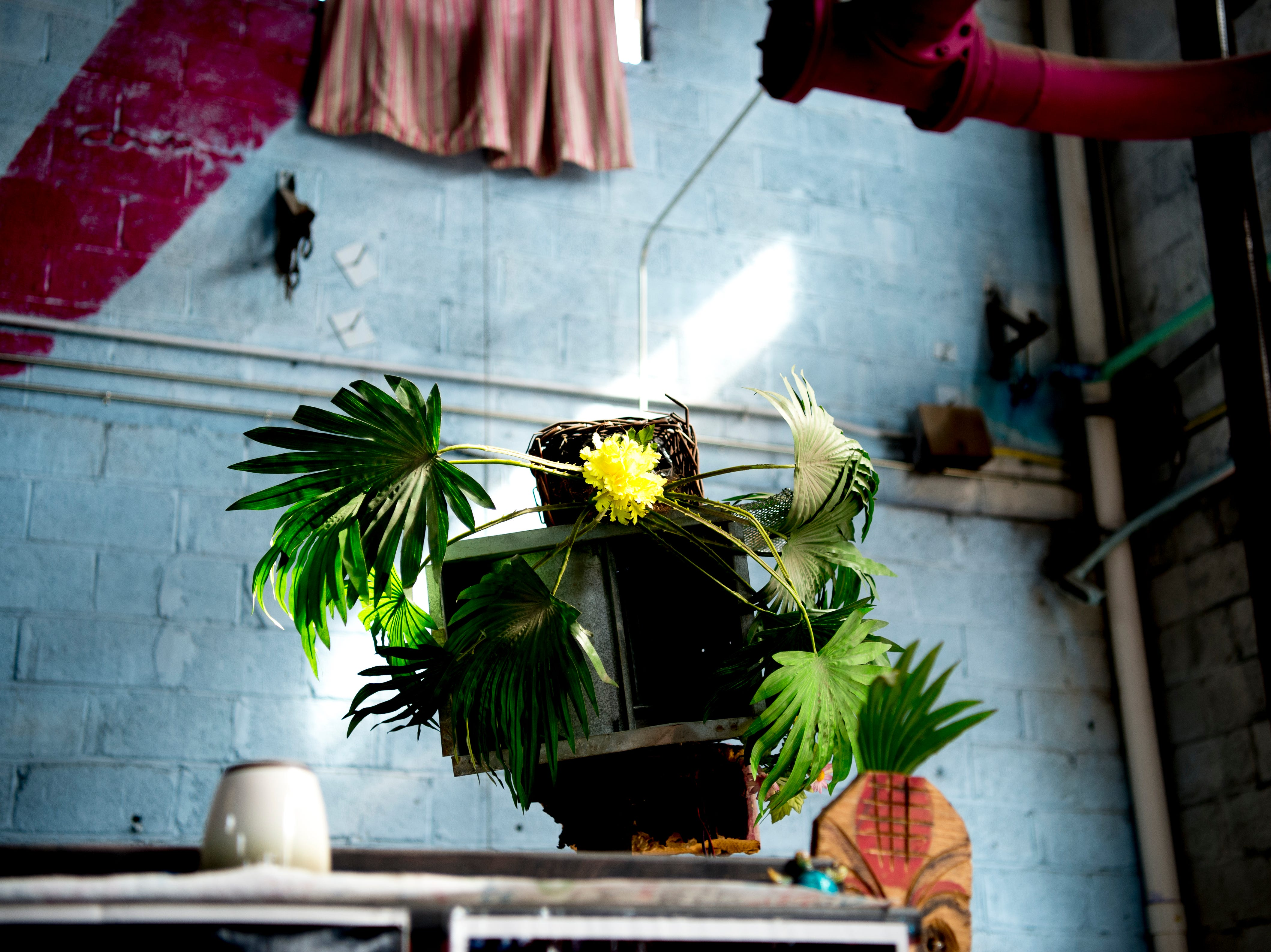 A potted plant decoration near the bar at Bar Marley in Knoxville, Tennessee on Thursday, February 14, 2019. The Caribbean-themed Bar Marley is facing possible acquisition and condemnation by KCDC due to code violations.