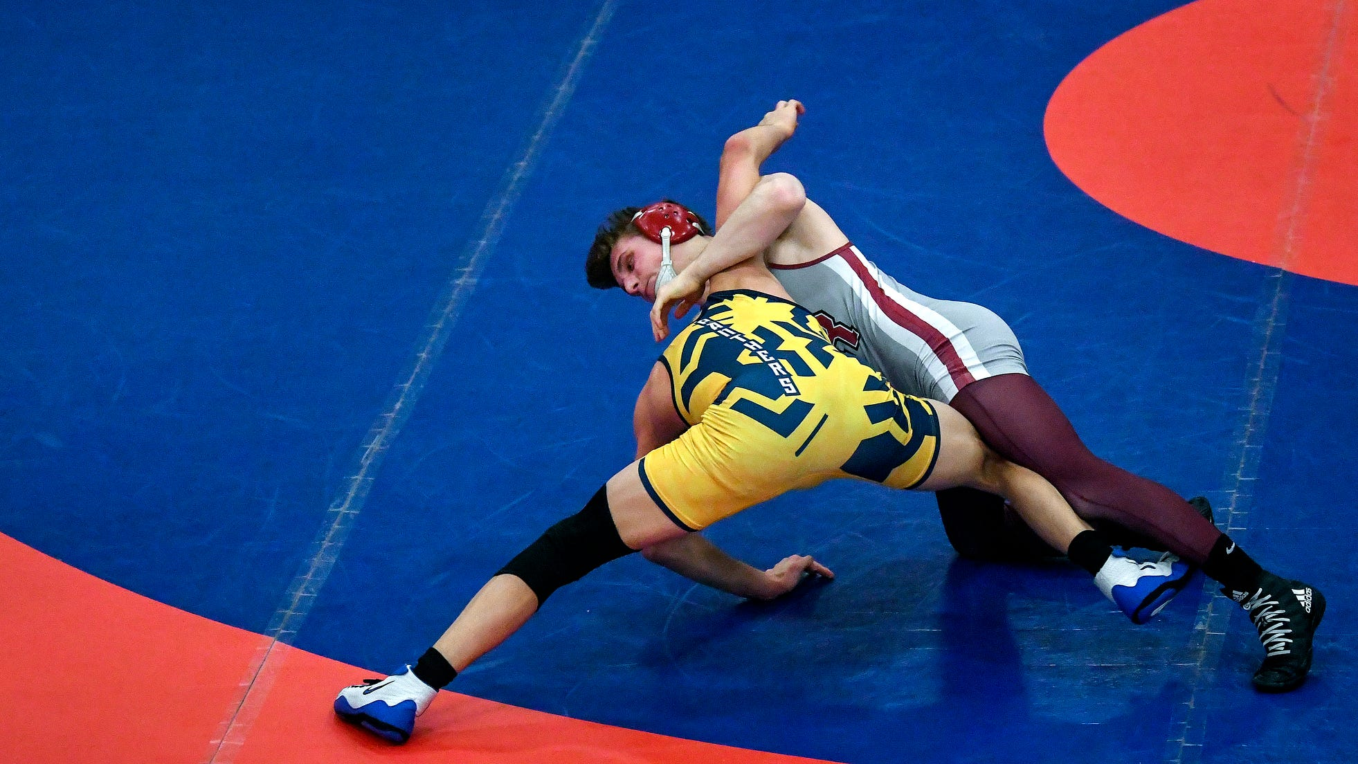 Wrestling roundup: Eaton Rapids has three regional champs, sending nine to state finals