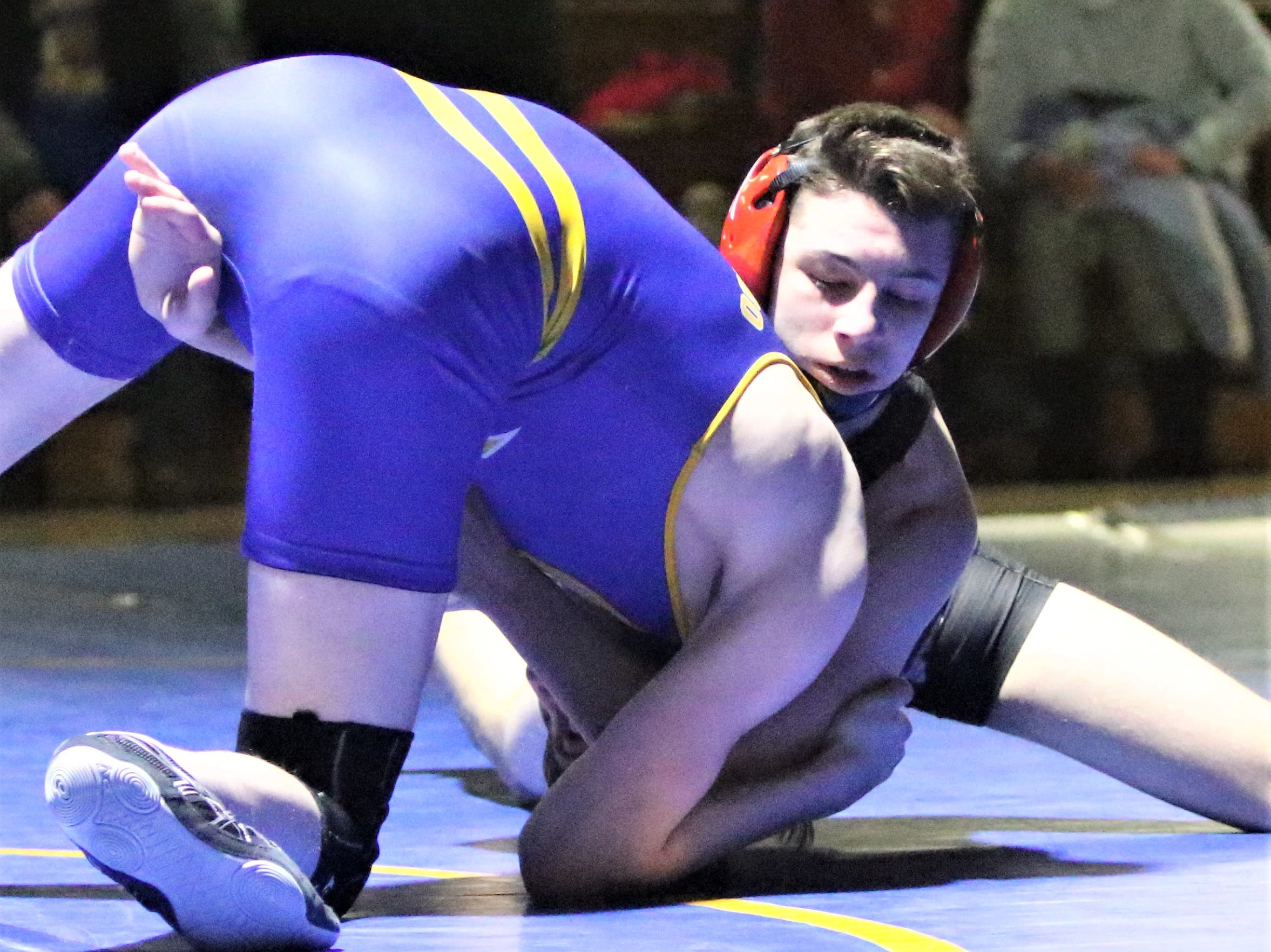 Wauwatosa's Dayton Lewis (back) wrestles against Mukwonago's Josiah Lynden in a WIAA sectional final on Feb. 13, 2019.