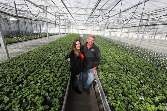 Doreen and Tom Deckenbach in one of several greenhouses on the property with some of the plants on February 14, 2019. Doreen and Tom have sold the farm they'ed owned and run, Hamilton Farms Greenhouses and Farm Market in Boonton, a business that has been in Tom's family almost 100 years.