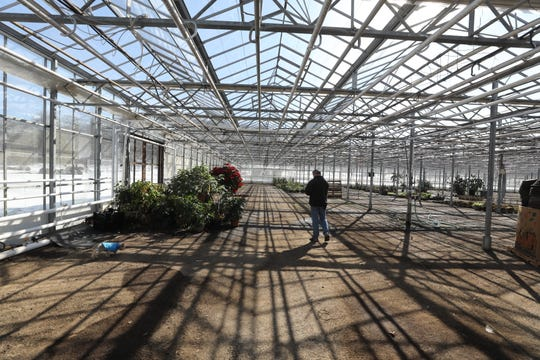 Tom Deckenbach in one the greenhouses on February 14, 2019. Doreen and Tom have sold the farm they'ed owned and run, Hamilton Farms Greenhouses and Farm Market in Boonton, a business that has been in Tom's family almost 100 years.