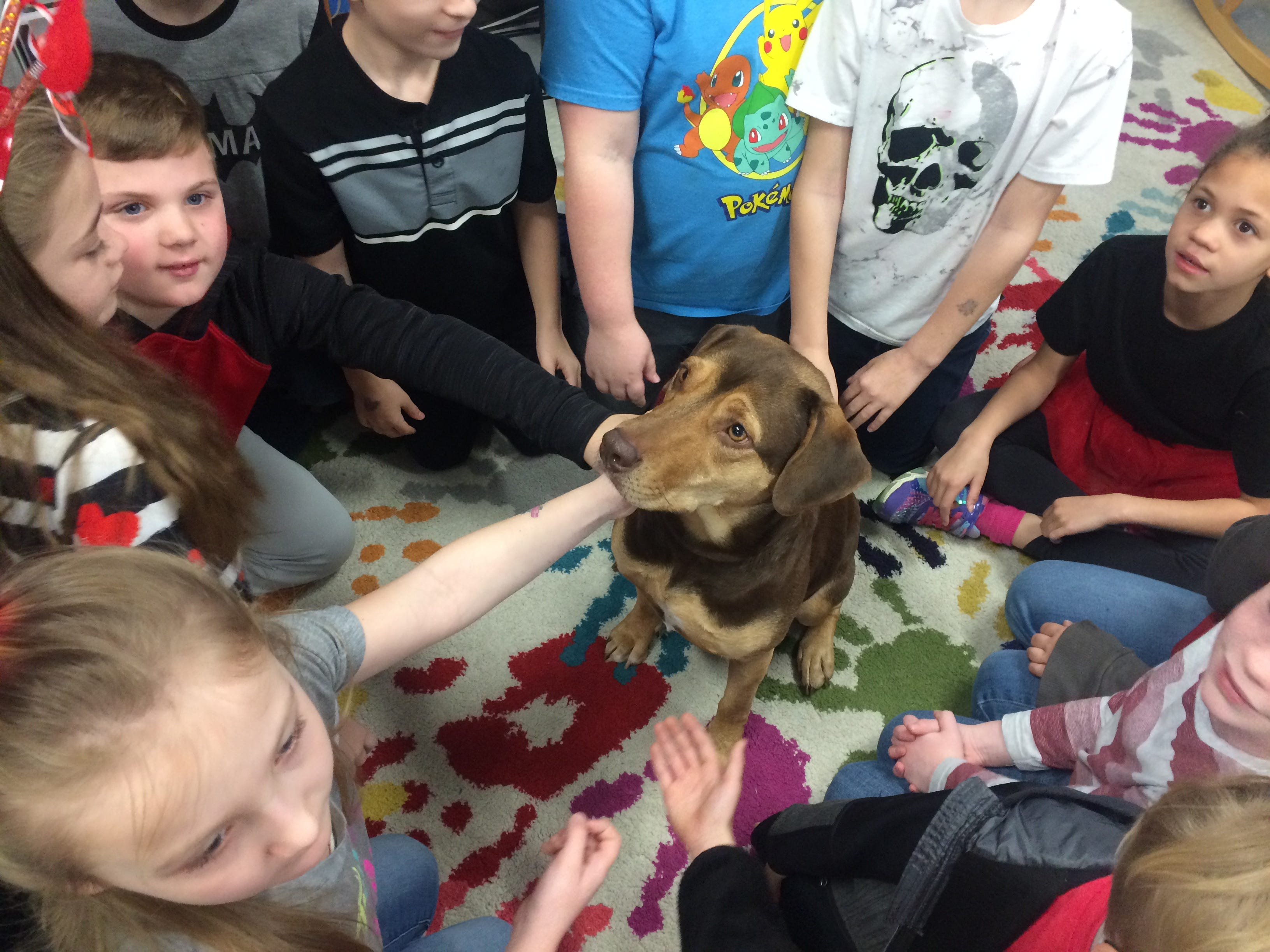 Shelby, a former Cheatham County Animal Control shelter dog, visits students at Kingston Springs Elementary School after starring in 'A Dog's Way Home.'
