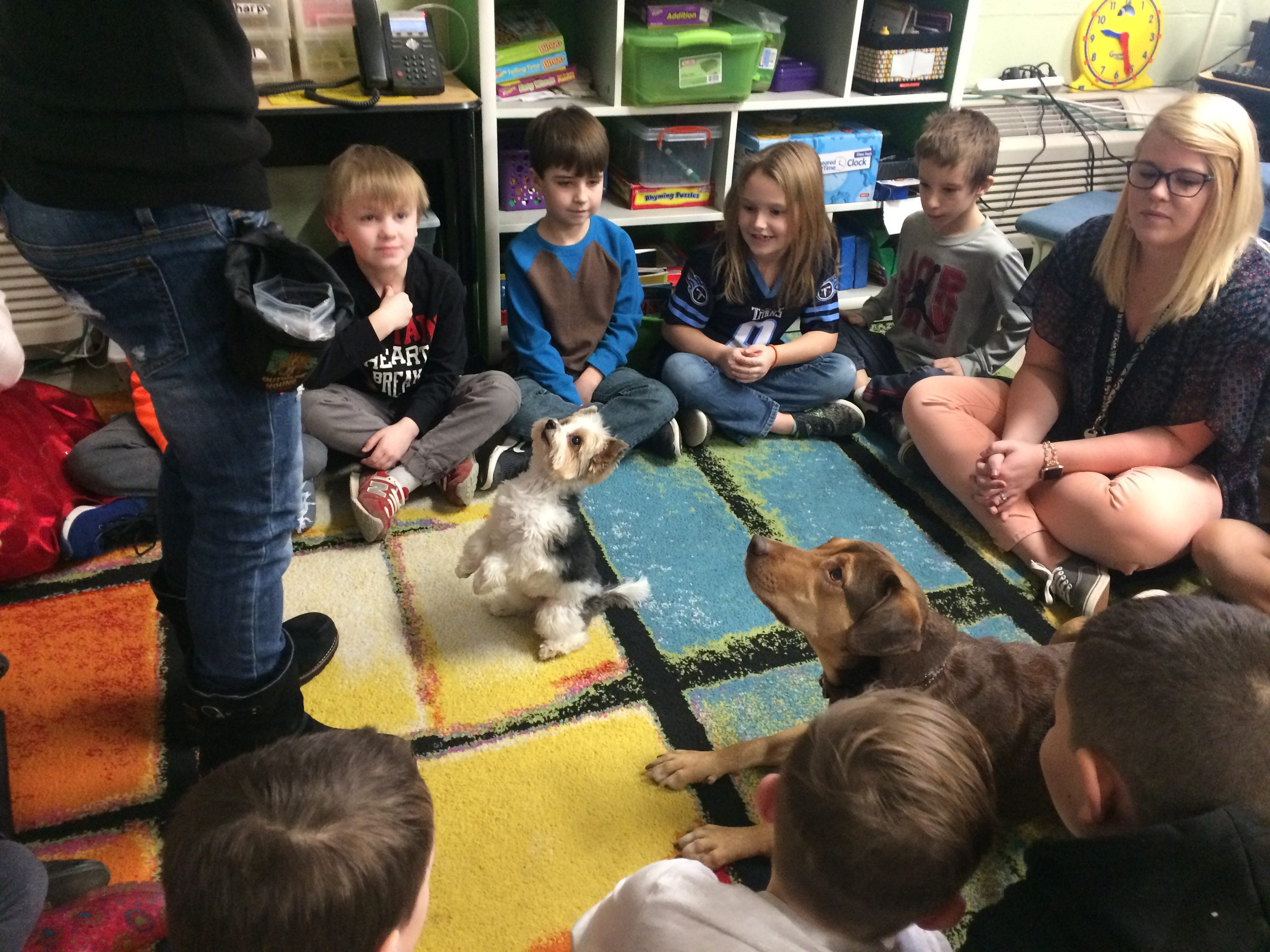 """Former Cheatham County shelter dog Shelby visits Kingston Springs students with her """"brother"""" Zachary, a yorkie with Debbie Pearl's Paws For Effect."""