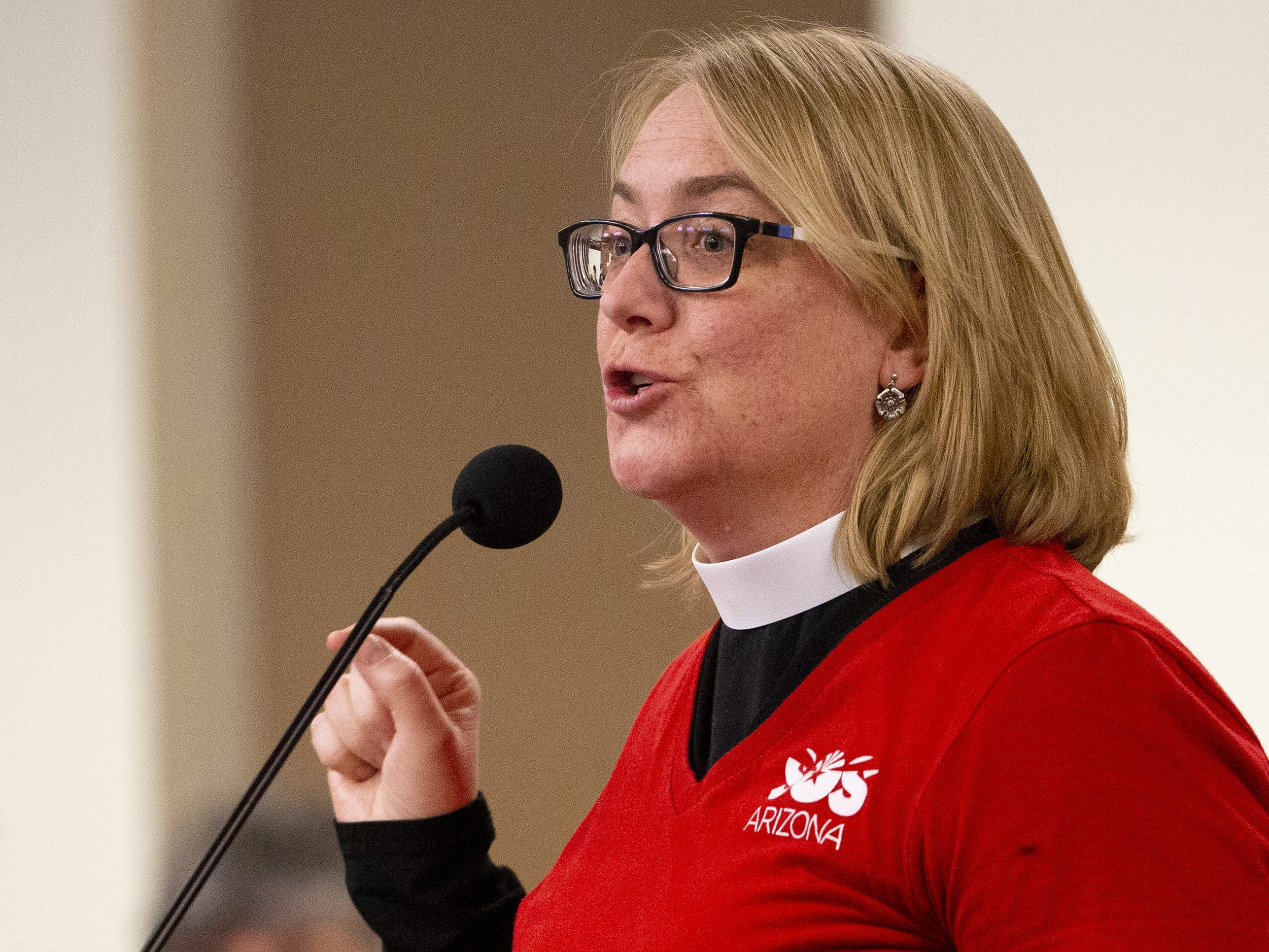 Rev. Anne Ellsworth speaks during a hearing on school vouchers in a senate hearing room at the state Capitol in Phoenix on February 13.