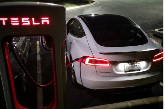 Modo Perro, la nueva herramienta de los autos Tesla para proteger mascotas dentro del auto.