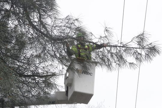 Hunter Dyche of Utility Tree Service removes a tree branch to keep it away from a power line on Lake Boulevard in Shasta Lake on Thursday, Feb. 14, 2019.