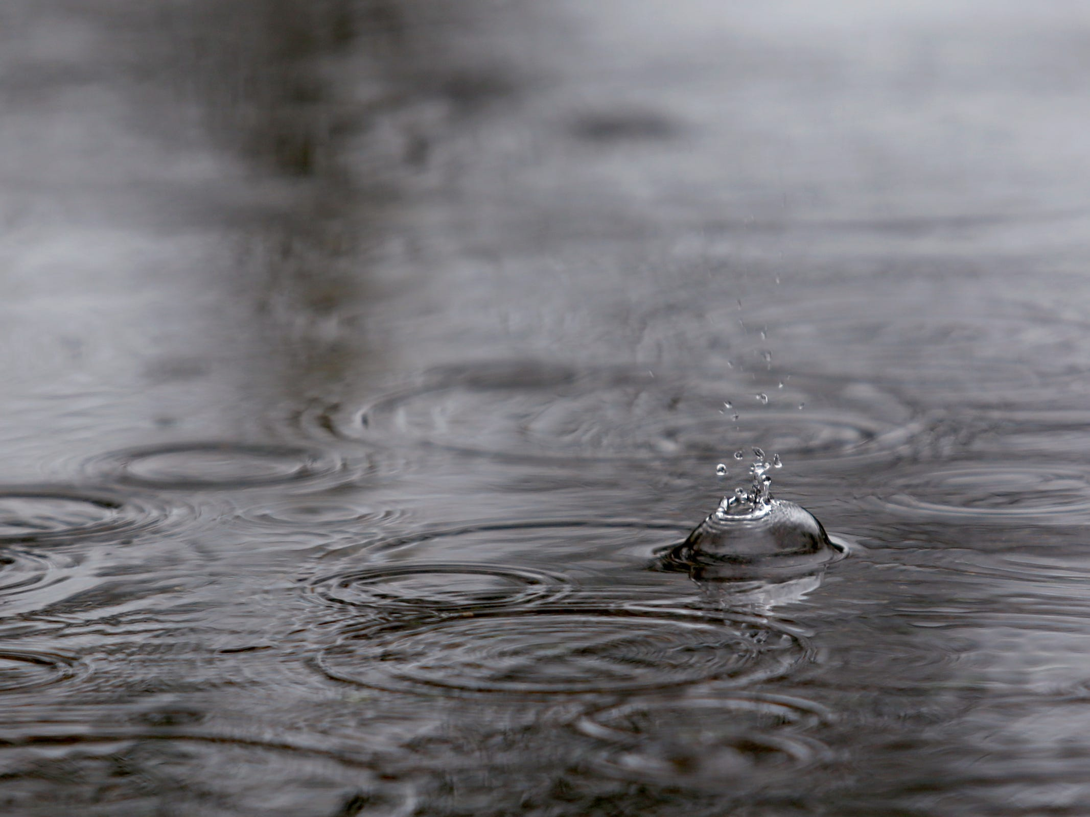 Rain falls in a puddle in Salem on Thursday, Feb. 14, 2019.