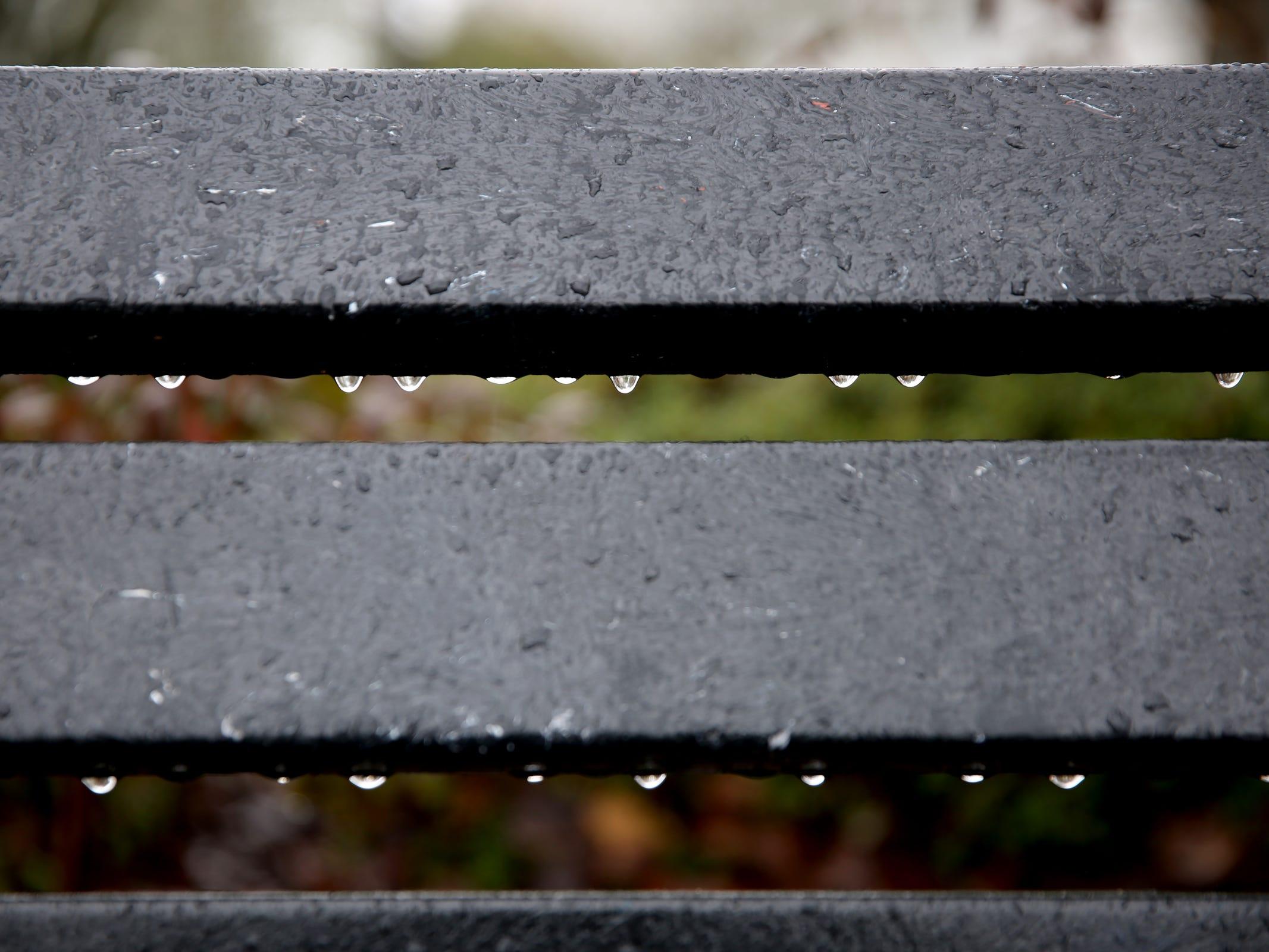 Raindrops grip a bench in Salem on Thursday, Feb. 14, 2019.