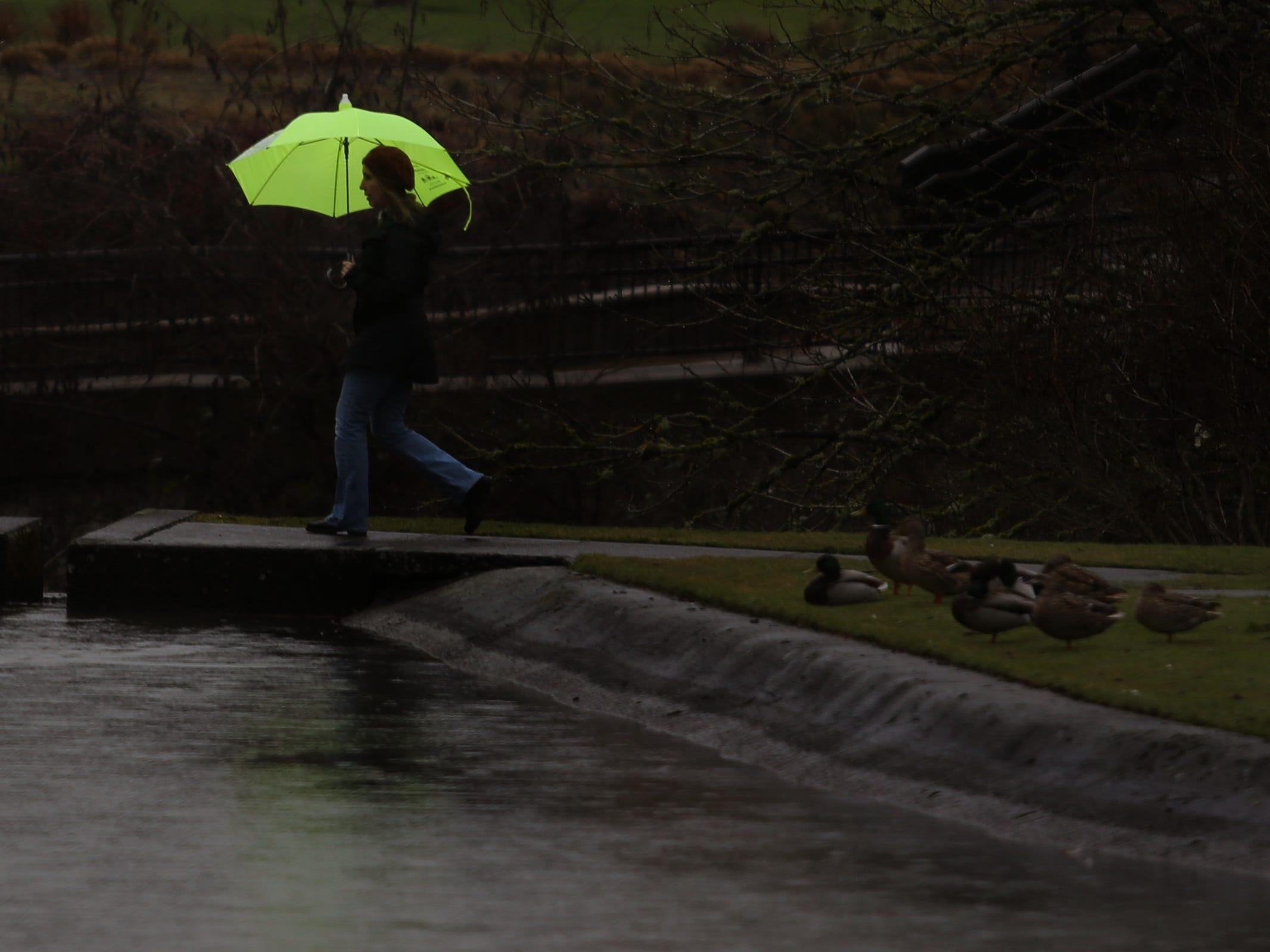 A woman uses an umbrella as rain falls in Salem on Thursday, Feb. 14, 2019.