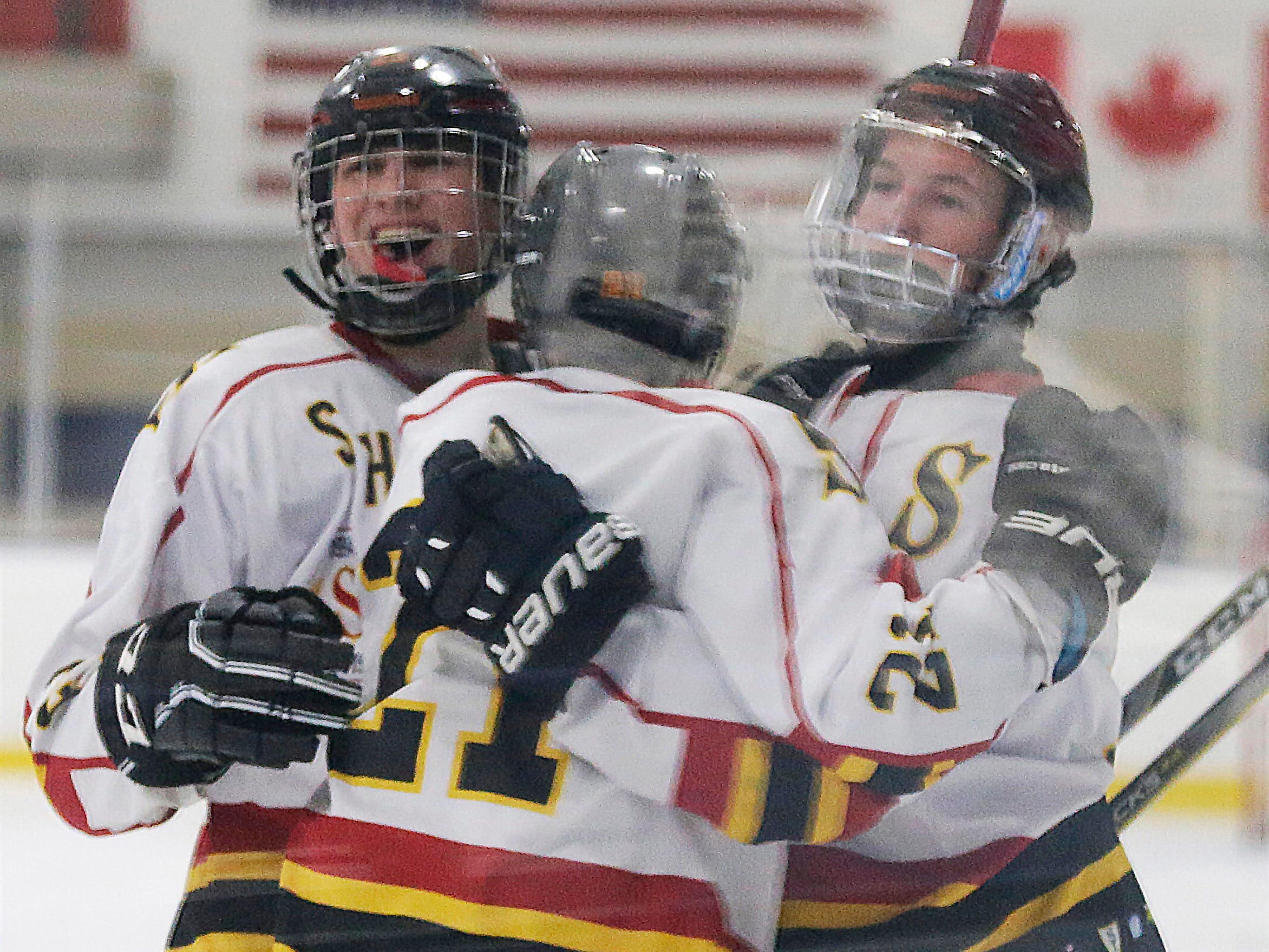 Sheboygan Red Raiders Celebrate a goal against Waupun, Wednesday, February 13, 2019, in Sheboygan, Wis.