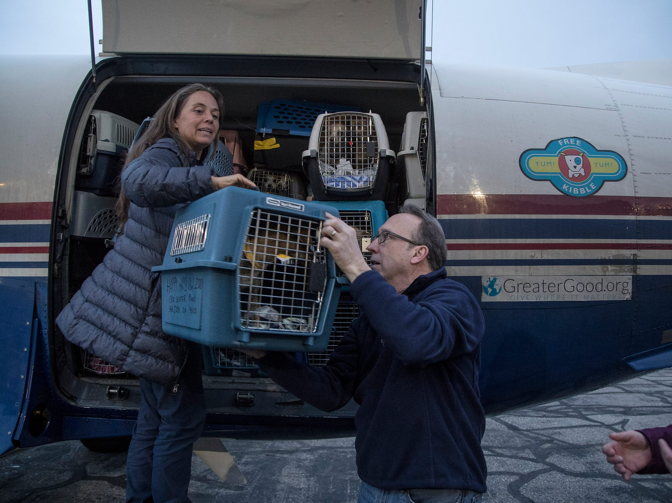 Co-pilot Angela Keeling of Bend, Ore., hands a crate of rescue dogs to Doug Plant, chief mission officer for the Michigan Humane Society at Willow Run Airport in Ypsilanti Township, Thursday, Feb. 14, 2019. Around 91 rescue dogs flew in from Fresno, Calif. to get adopted at one of the metro Detroit Michigan Humane Society facilities.