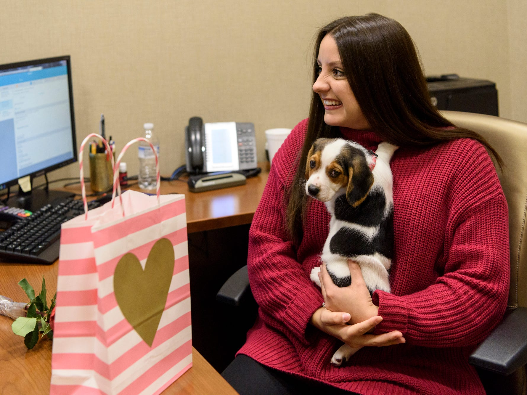 Megan Martin gushes over Prince, an eight-week-old Beagle puppy, who was sent to her Evansville Federal Credit Union office for a 30-minute cuddle session through the Vanderburgh Humane Society Cuddlegram fundraiser,  Thursday morning, Feb. 14, 2019. Her husband, Trevor Martin, arranged for the puppy deliver to surprise her at work.