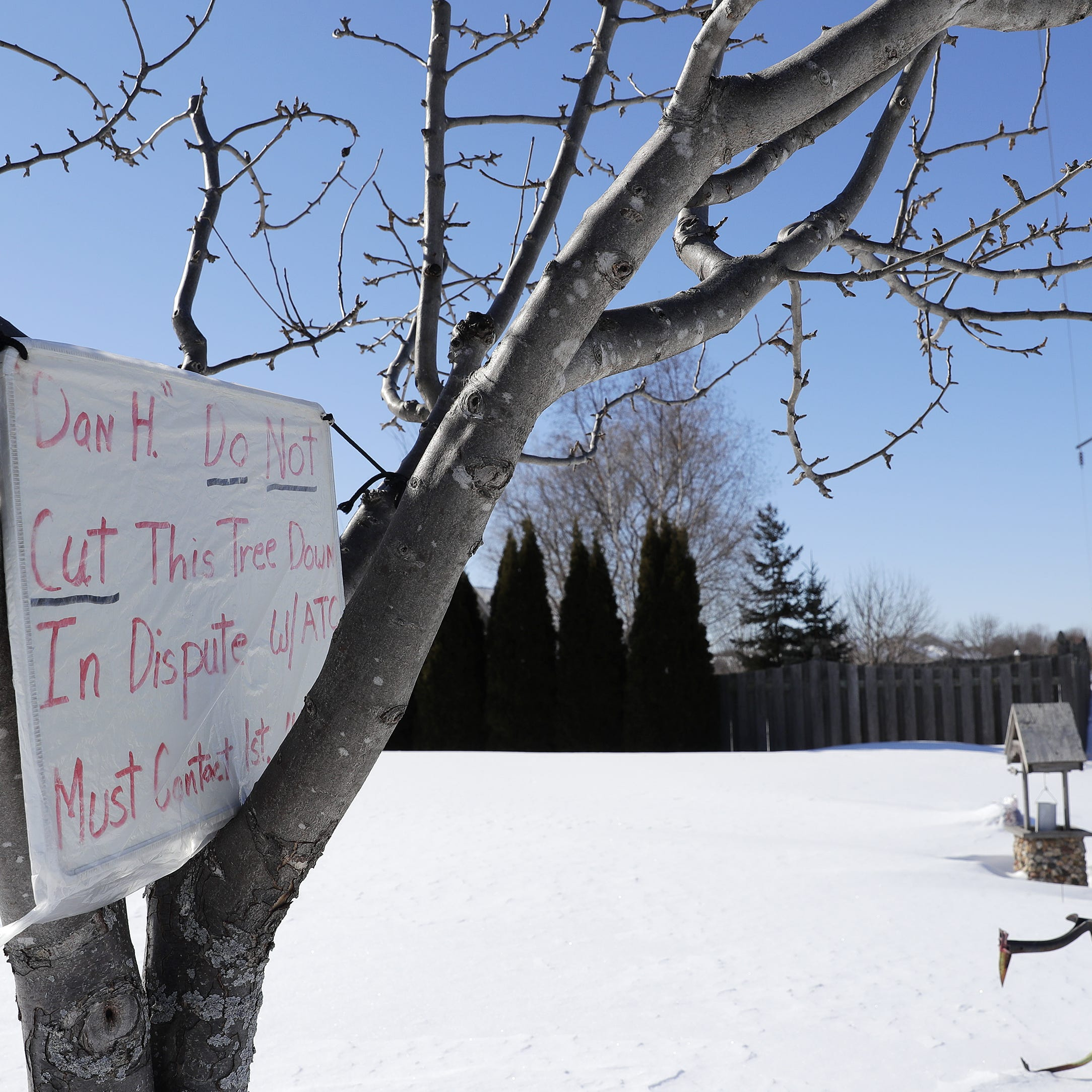 'They get to do what they want': Green Bay residents fight power company to save trees
