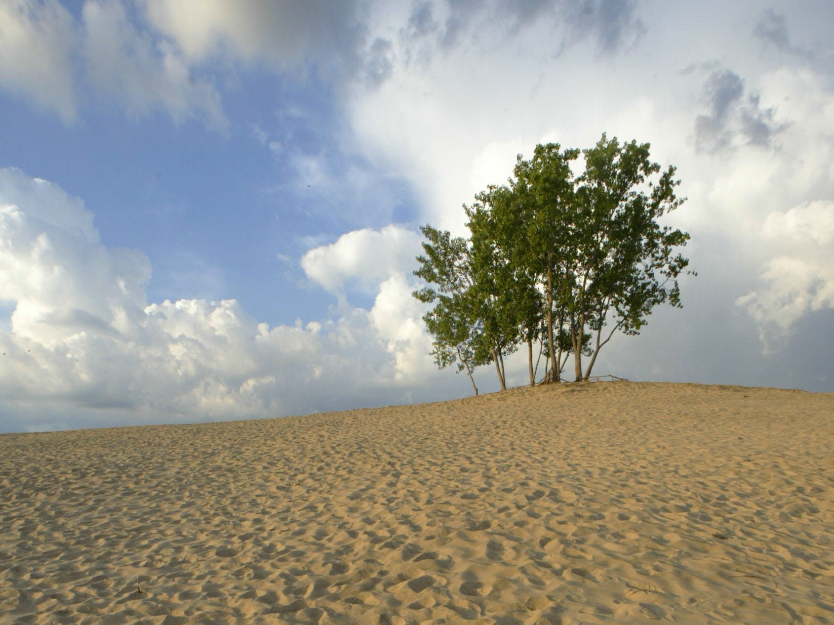 At the Indiana Dunes National Lakeshore, Mount Baldy, a 125-foot sand dune, is a popular stop on the way to Lake Michigan.