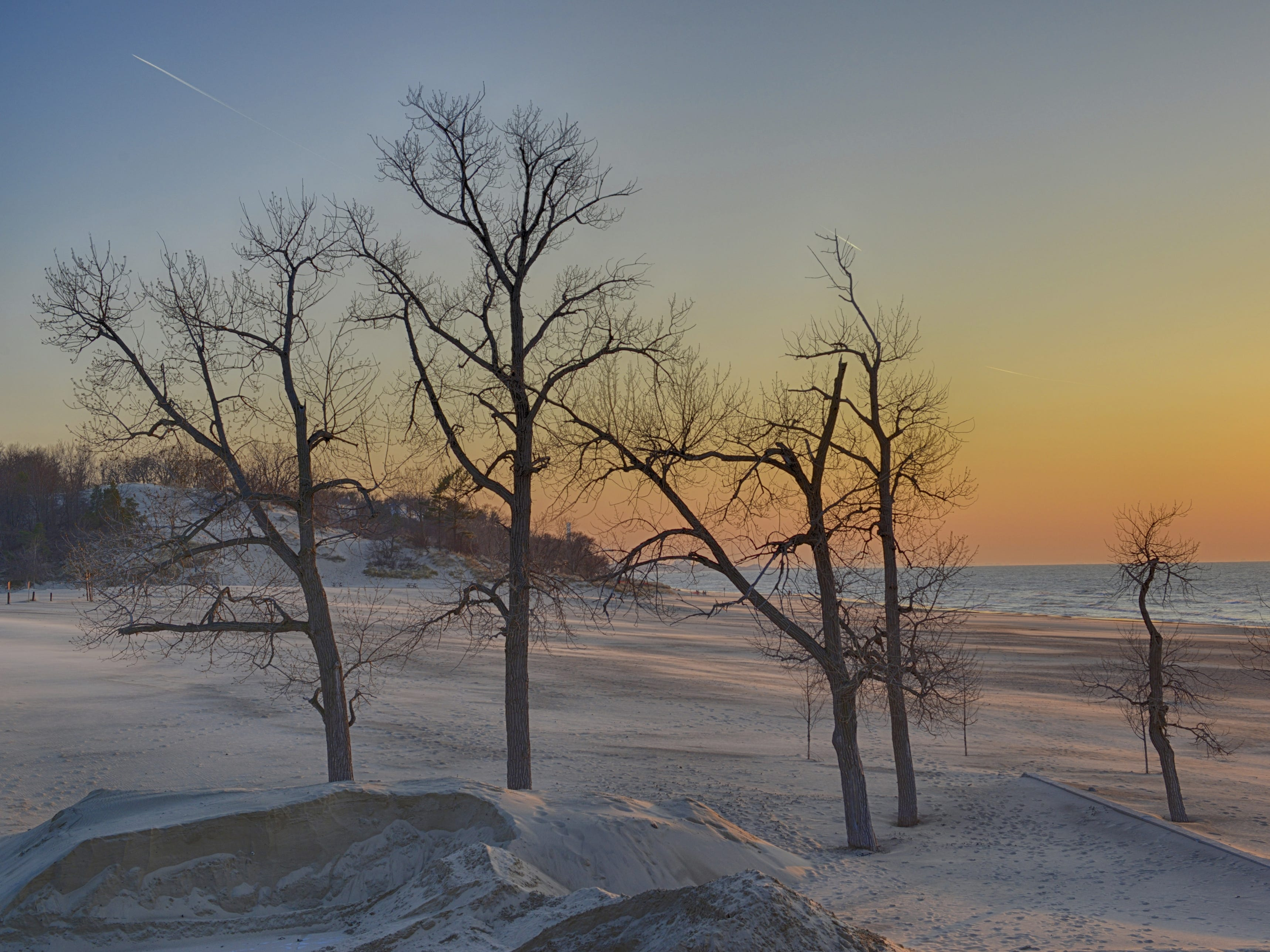 The Indiana Dunes National Park is a natural gem with wildlife such as great blue herons surrounded by factories and highways.