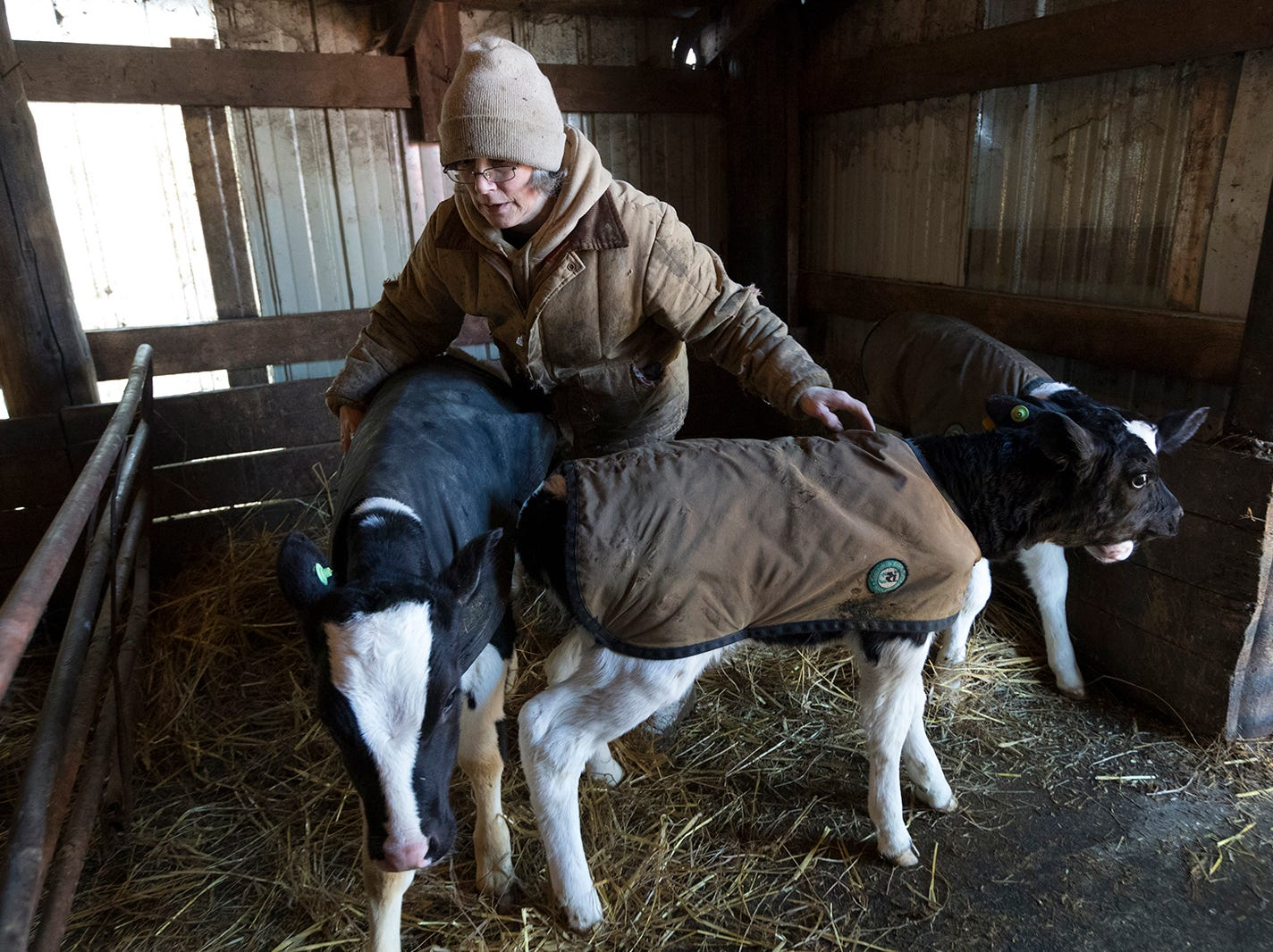 Dairy farmers are in crisis — and it could change Wisconsin forever