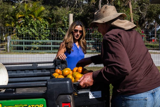 Melissa Bazley collects tangos from Martin Mason, owner of Tropical Oaks Farm in LaBelle, on Friday, Feb. 8, 2019. One way Krazy Krops sources its product is through local farms like Tropical Oaks.