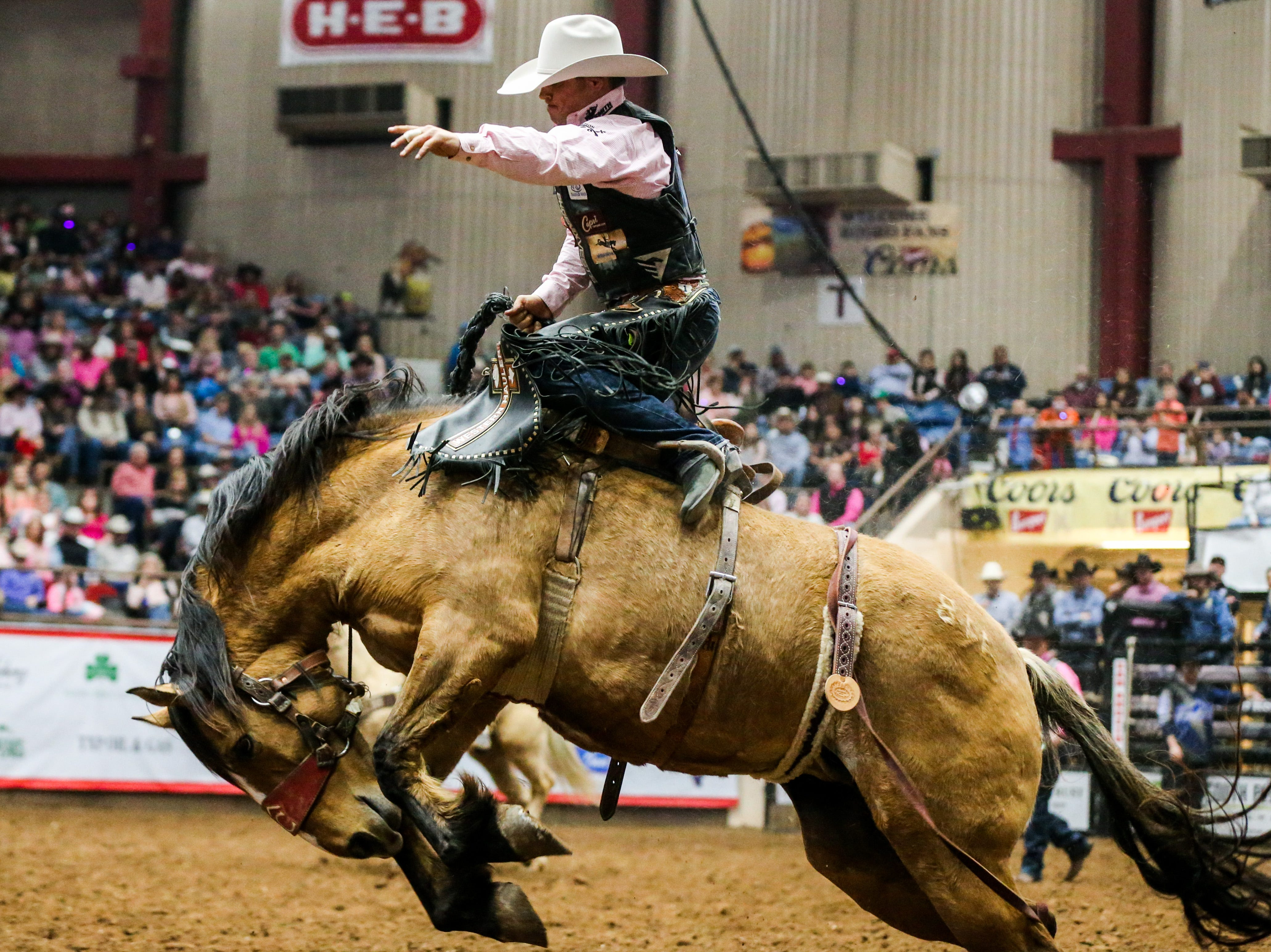 Bradley Carter rides a bronc during the San Angelo Stock Show & Rodeo performance Thursday, Feb. 14, 2019, at Foster Communications Coliseum.