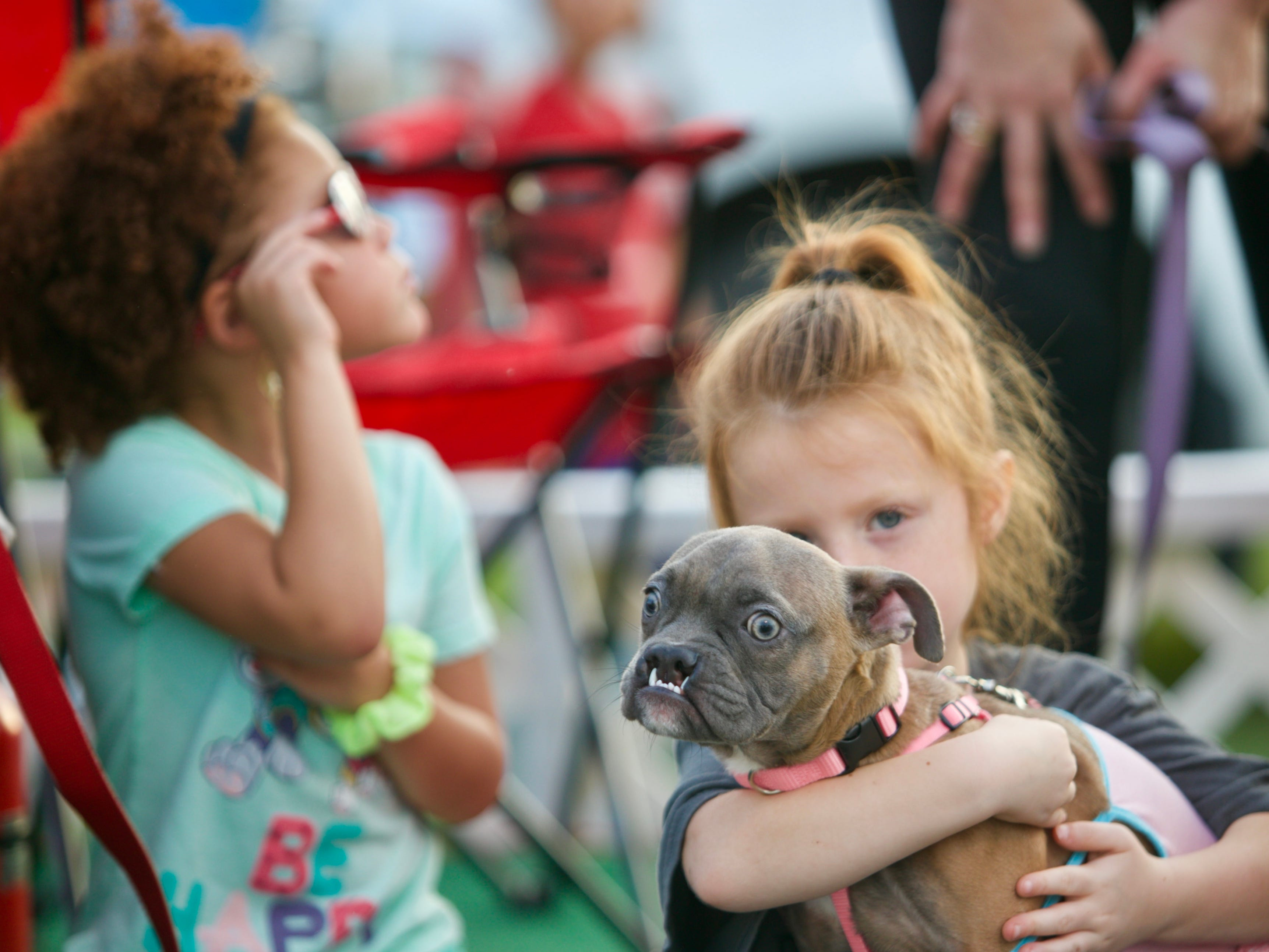 Kaylee Berroa, 5, right, waits with Skye the dog on the Parker's Rainbow Bridge Animal Rescue and  Gulf Coast Humane Society float on Saturday.