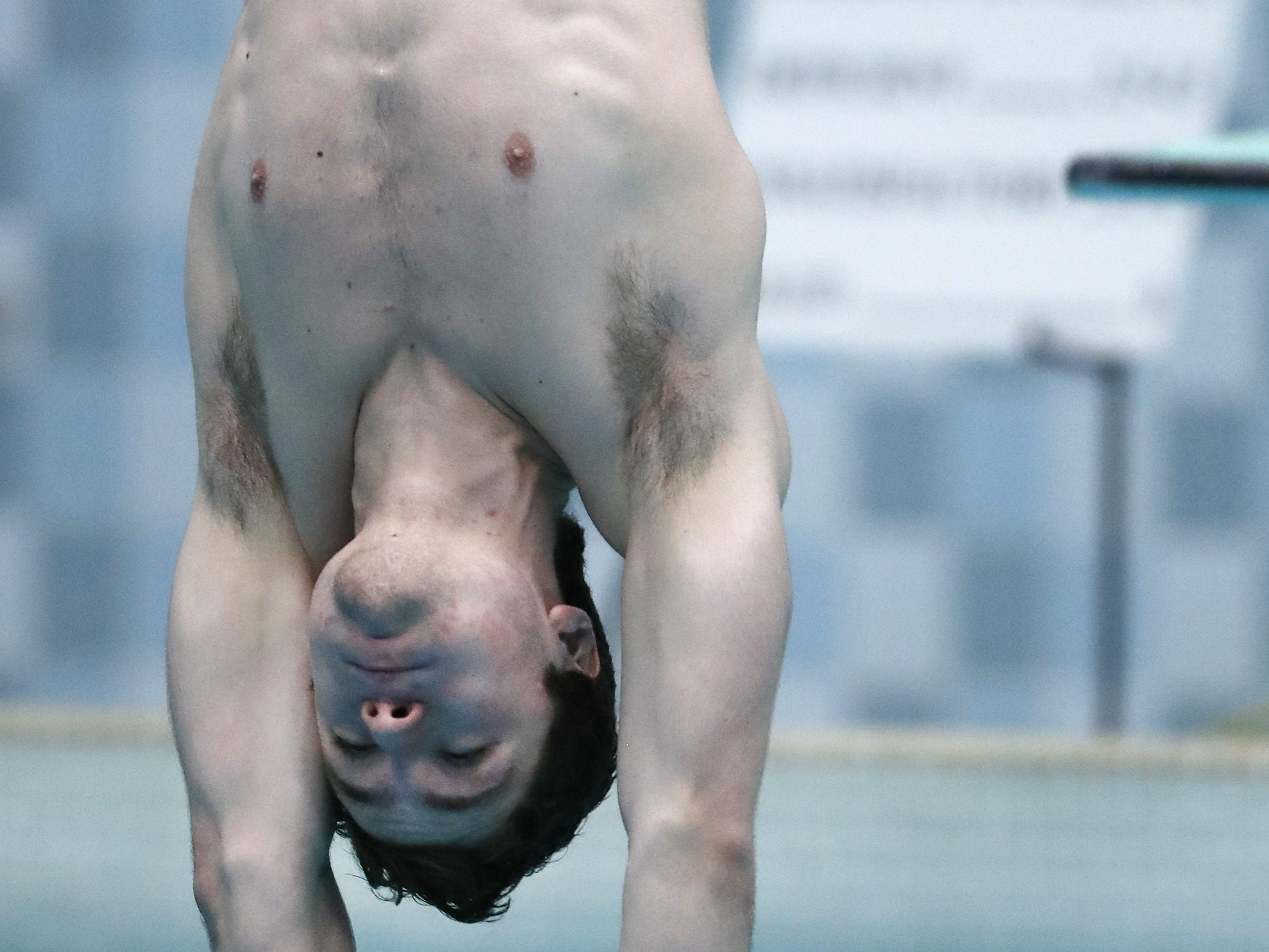 Sheboygan SouthÕs Brock Kovacic dives during the Division 1 2019 State Boys Swimming and Diving Championships Saturday, Feb. 16, 2019, at the UW Natatorium in Madison, Wis. Danny Damiani/USA TODAY NETWORK-Wisconsin