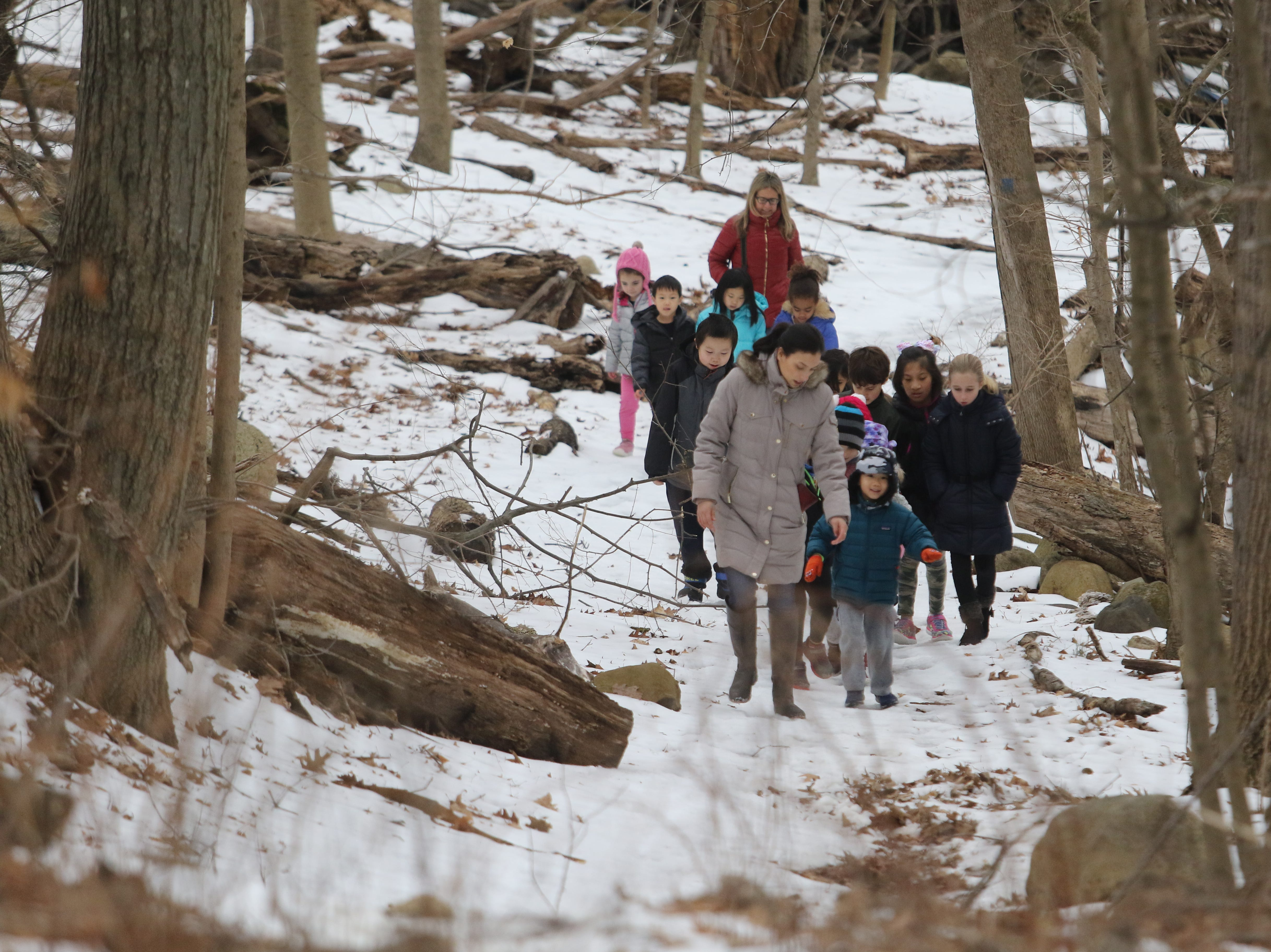"The group heads back from their nature walk on February 15, 2019. Ridgewood Parks and Recreation, in partnership with HealthBarn USA, celebrated ""Winterfest"", a day for kids baking cookies, doing yoga and taking a nature walk."