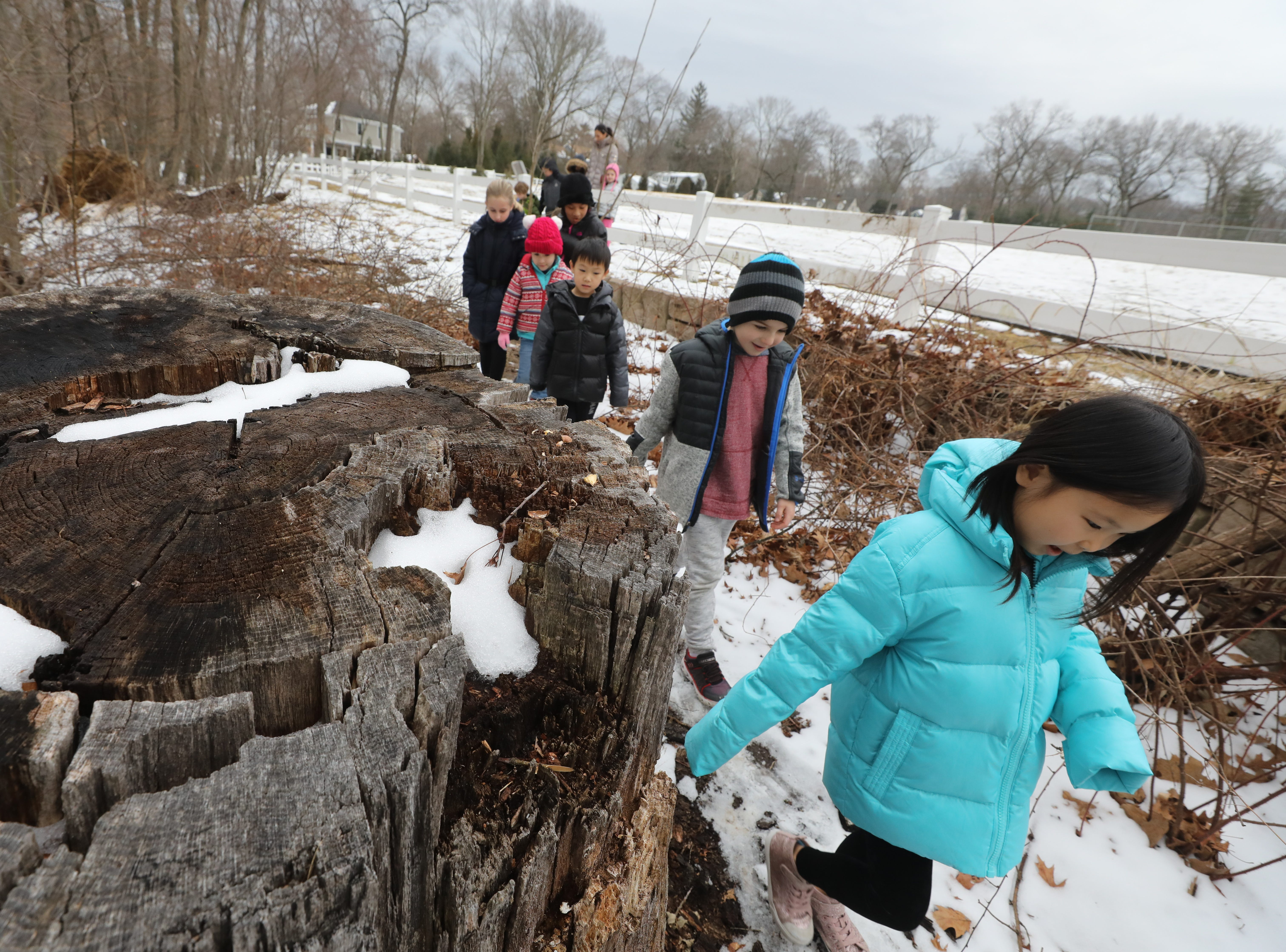 "Kids attending participate in a nature walk on February 15, 2019. Ridgewood Parks and Recreation, in partnership with HealthBarn USA, celebrated ""Winterfest"", a day for kids baking cookies, doing yoga and taking a nature walk."