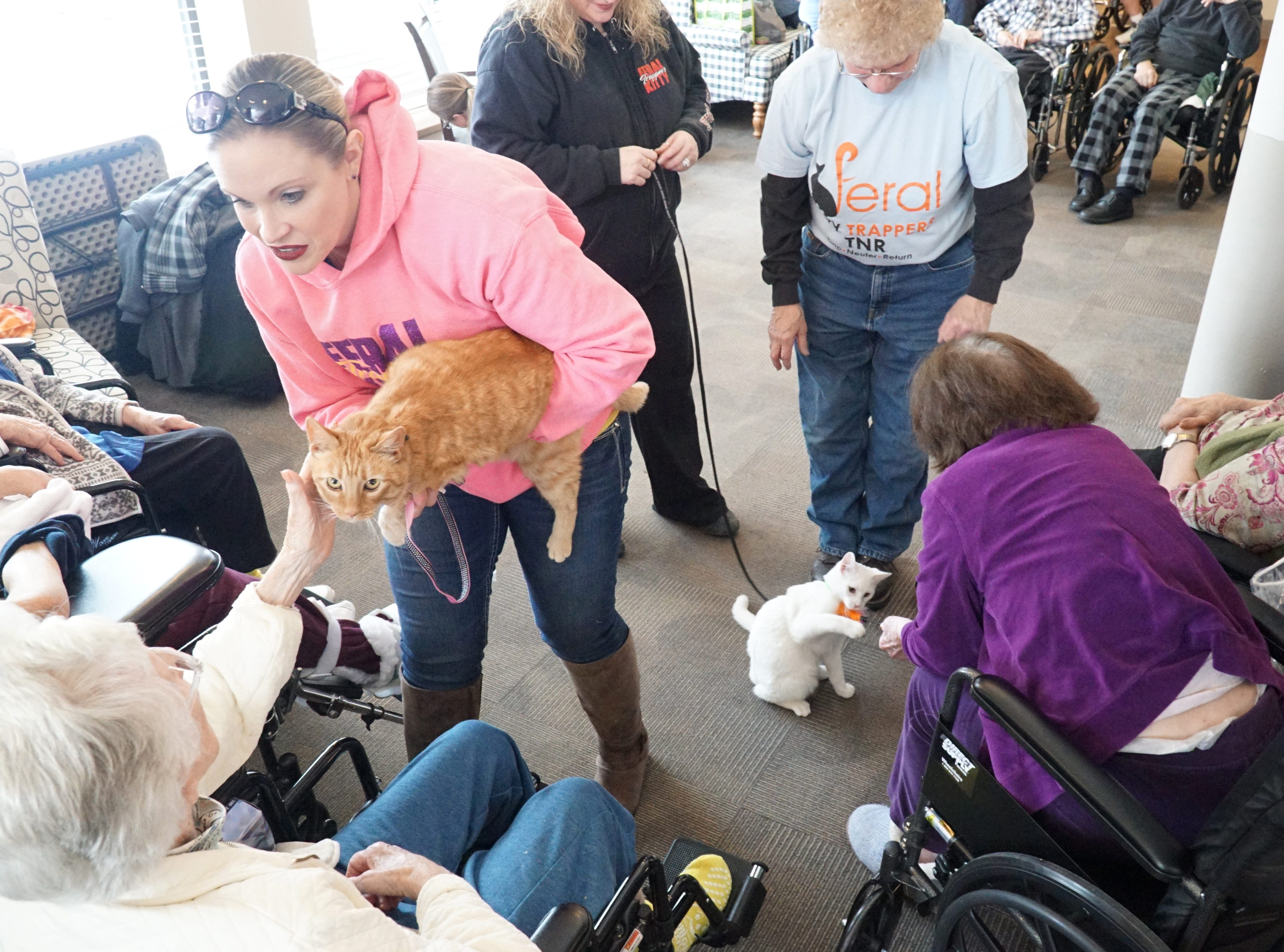 Volunteers from Feral Kitty Trappers introduce some of their furry friends to residents of South Lyon Senior Care and Rehab on Feb. 16.
