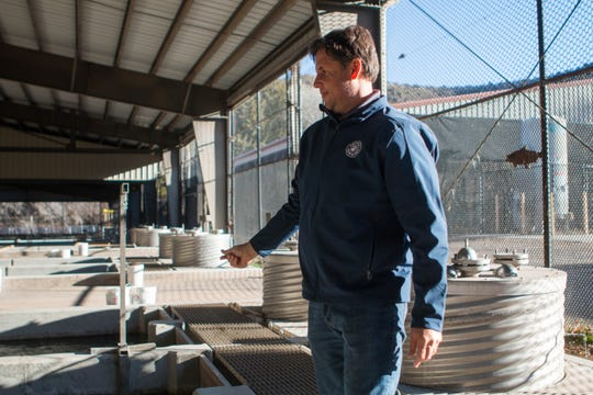 "Geoffrey Rabinovich, statewide hatchery program manager for Arizona Game and Fish Department, is originally from Peru where his family was involved with shrimp farms. ""To me, stocking fish is for people to fish but also for people to build lifetime memories,"" he says."