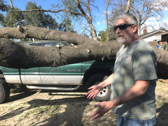 Karl Schreiber describes Saturday what happened early Wednesday morning when a giant oak tree fell on his Dodge Ram 1500 outside his home on Traverse Street during the snowstorm.