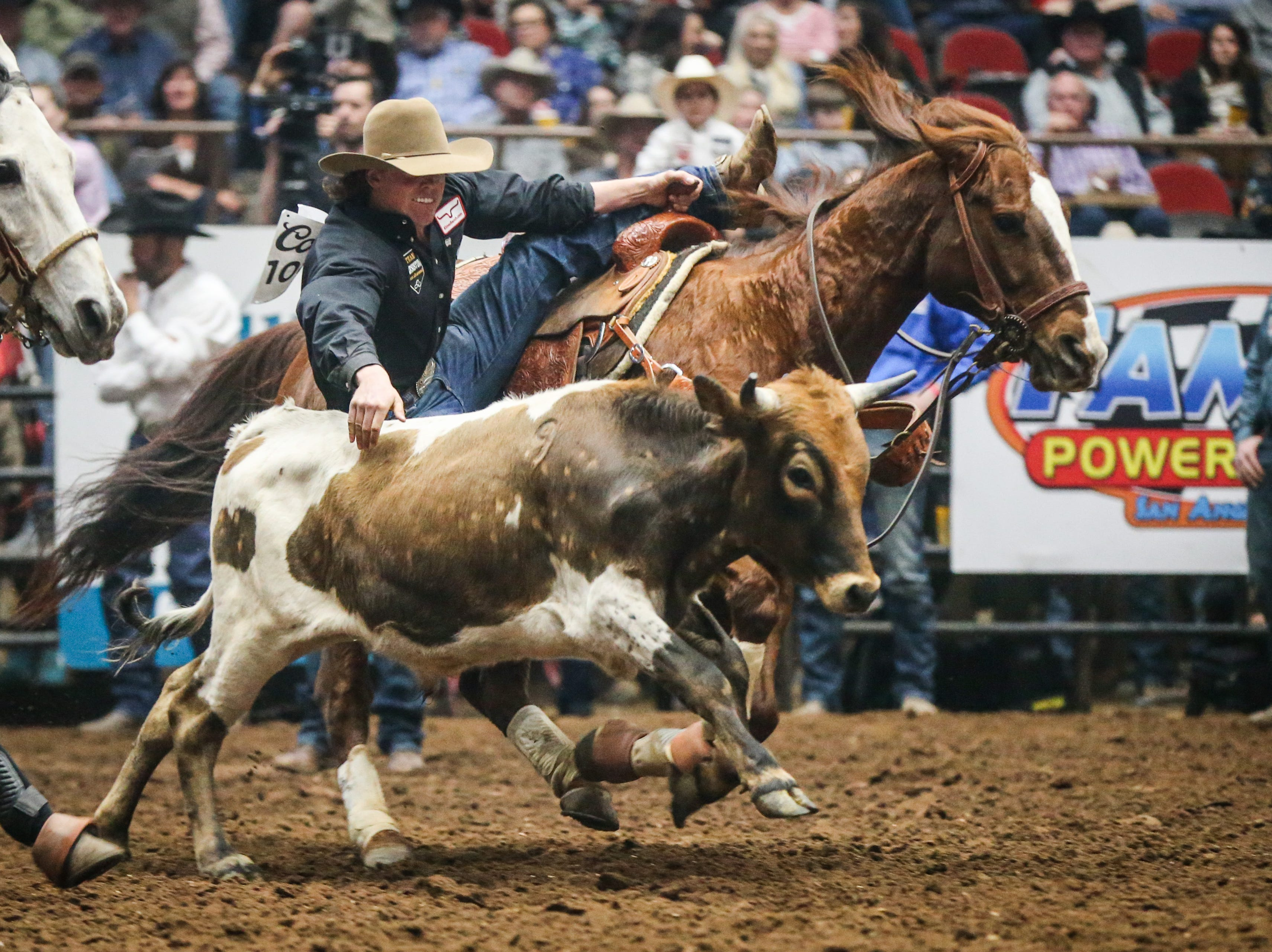 Tucker Allen rides out to steer wrestle during finals of the San Angelo Stock Show & Rodeo Friday, Feb. 15, 2019, at Foster Communications Coliseum.