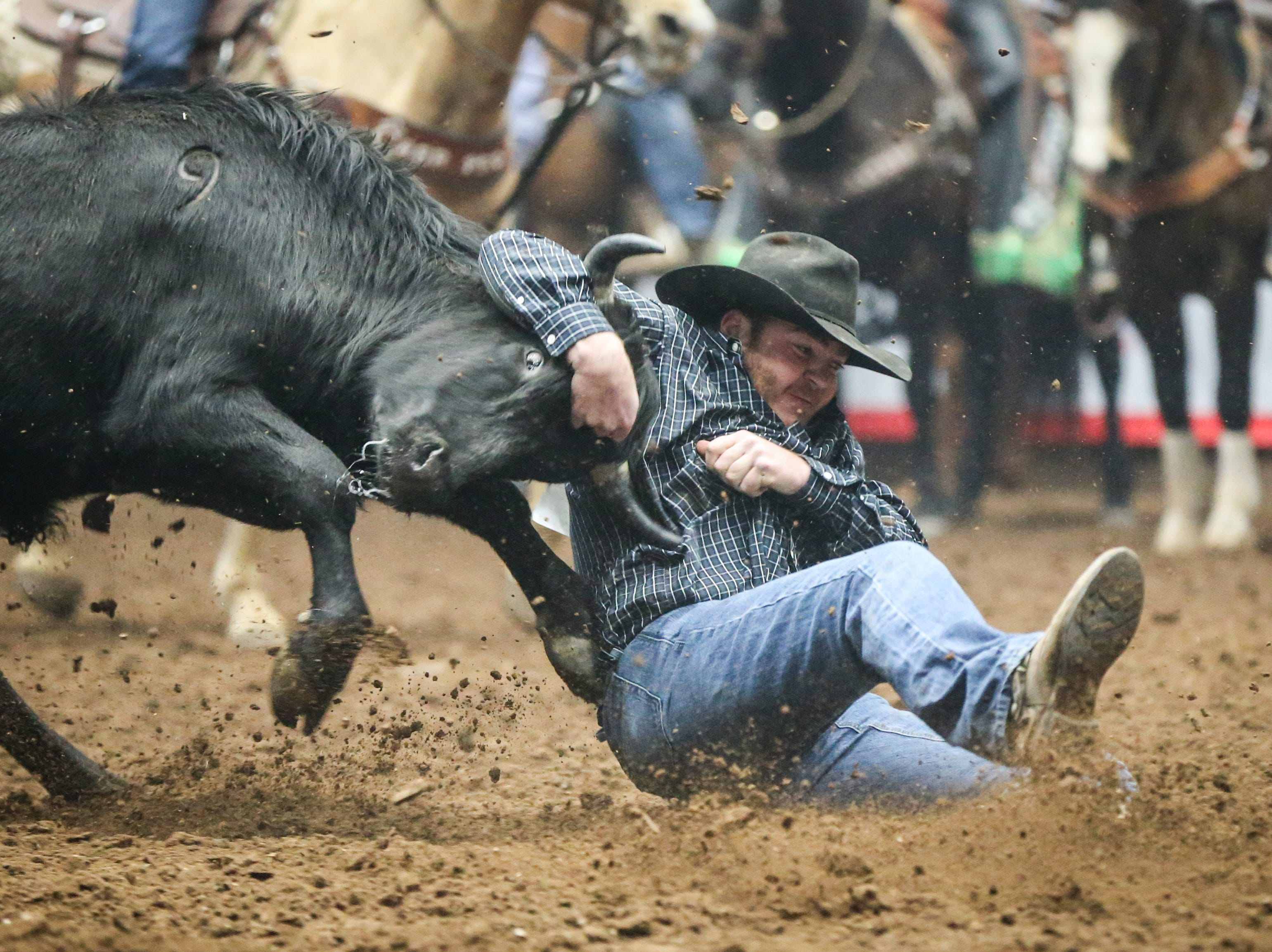 Jacob Edler steer wrestles during finals of the San Angelo Stock Show & Rodeo Friday, Feb. 15, 2019, at Foster Communications Coliseum.