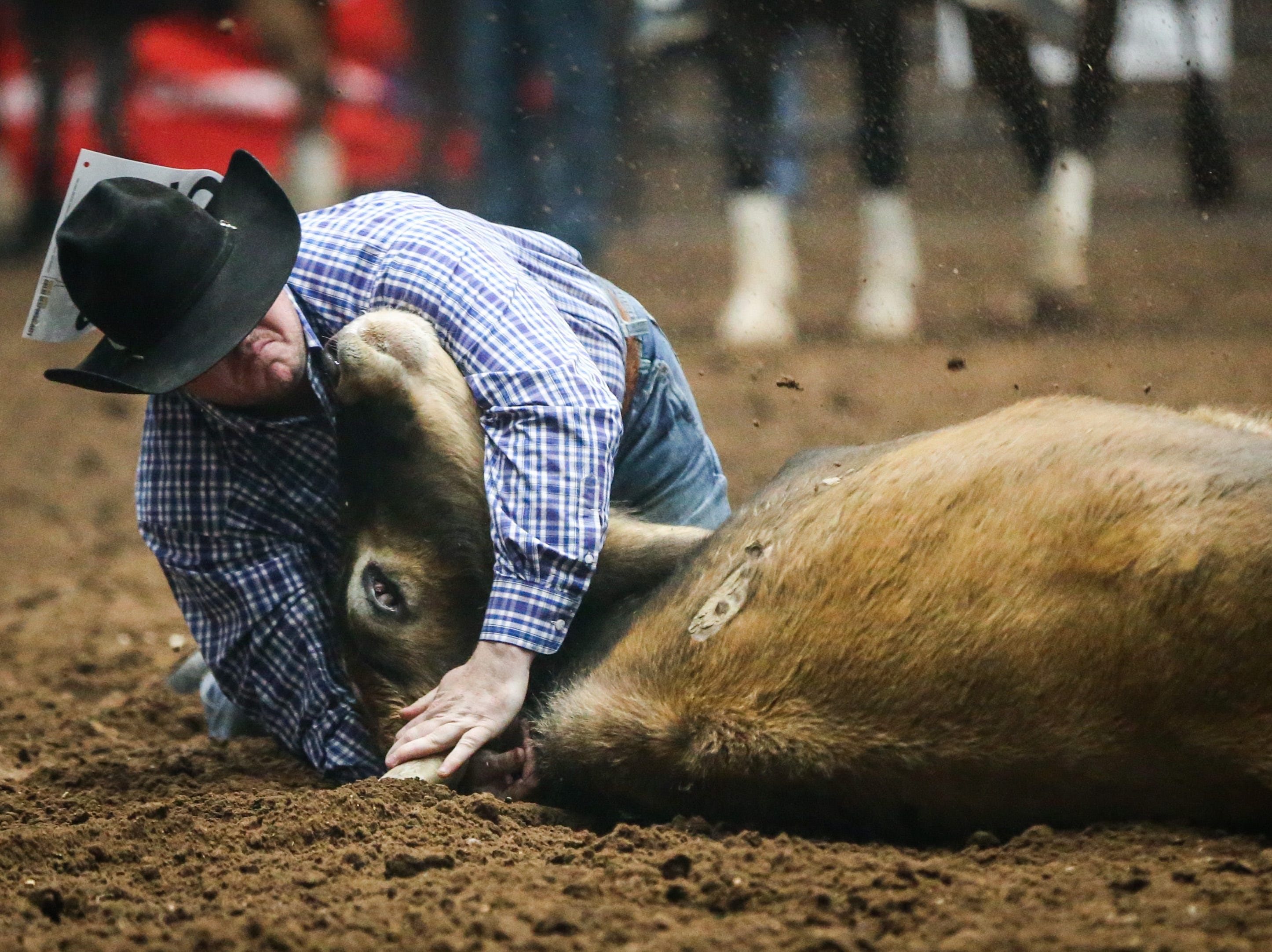 Payden McIntyre steer wrestles during finals of the San Angelo Stock Show & Rodeo Friday, Feb. 15, 2019, at Foster Communications Coliseum.