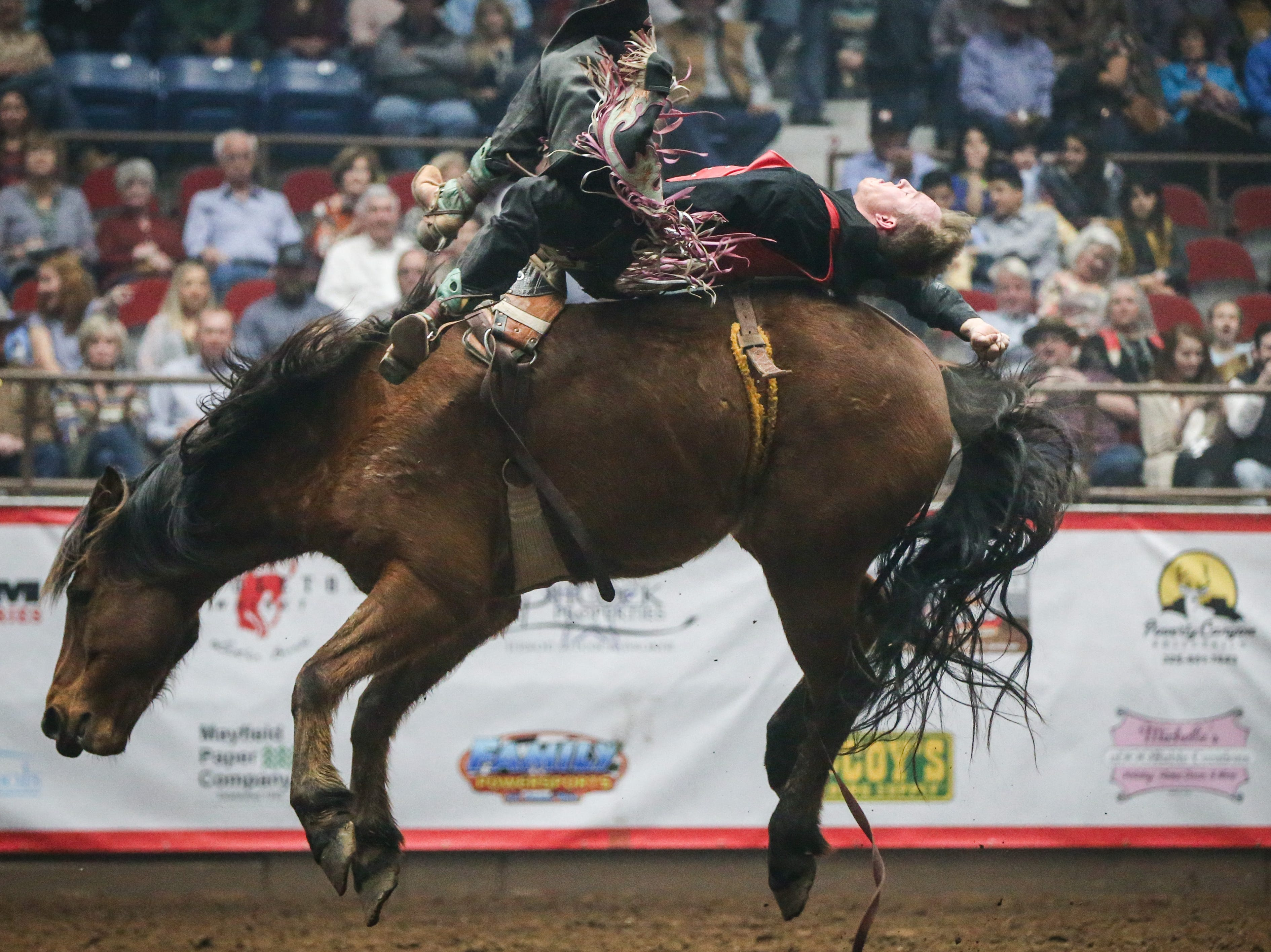 Hunter Brasfield rides bareback on Lady's Man during finals of the San Angelo Stock Show & Rodeo Friday, Feb. 15, 2019, at Foster Communications Coliseum.