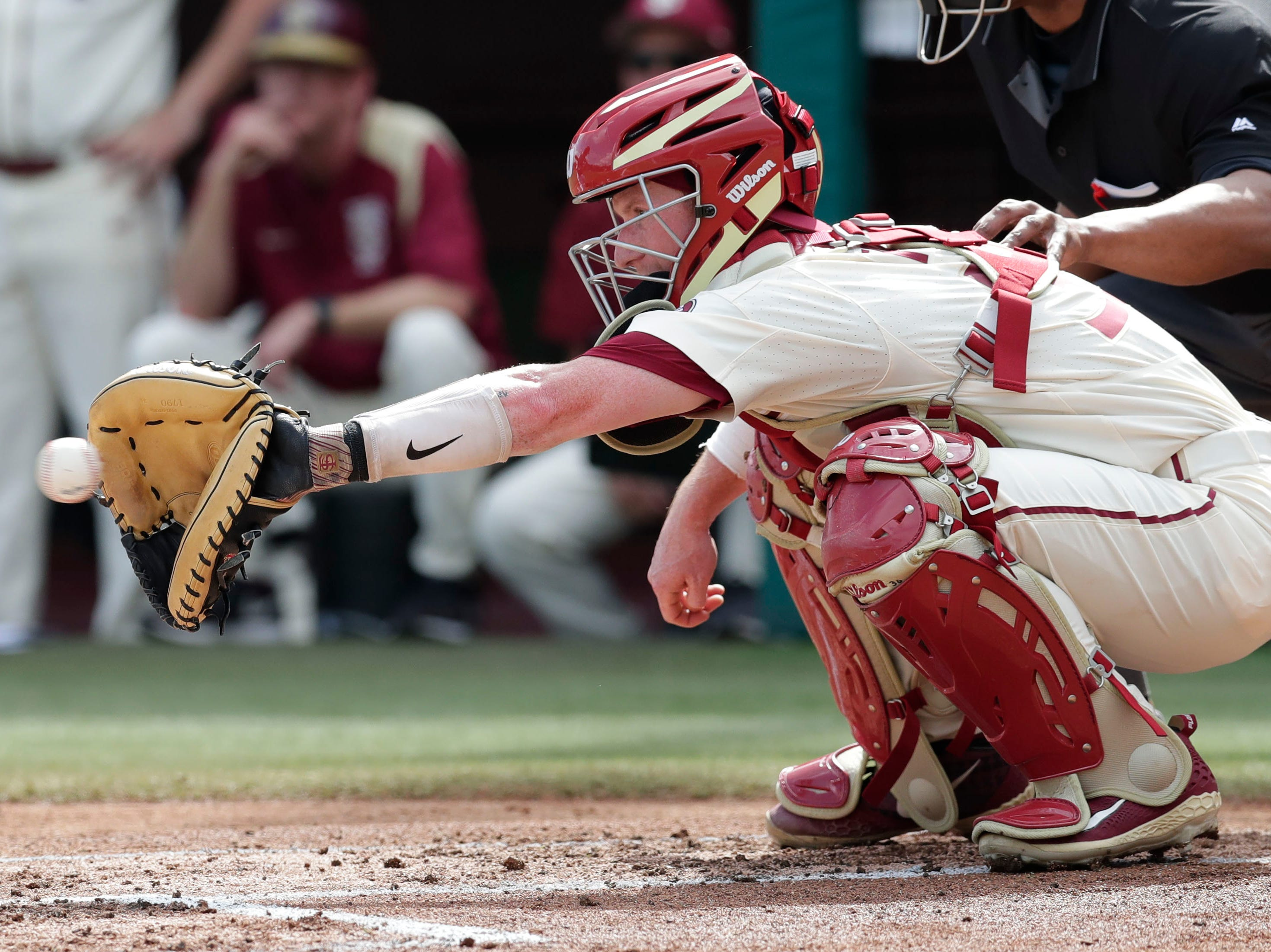 Florida State Seminoles catcher/first baseman Jonathon Foster (36) catches the pitch as the Florida State Seminoles host the Maine Black Bears for the second game of the series, Saturday Feb. 16, 2019.