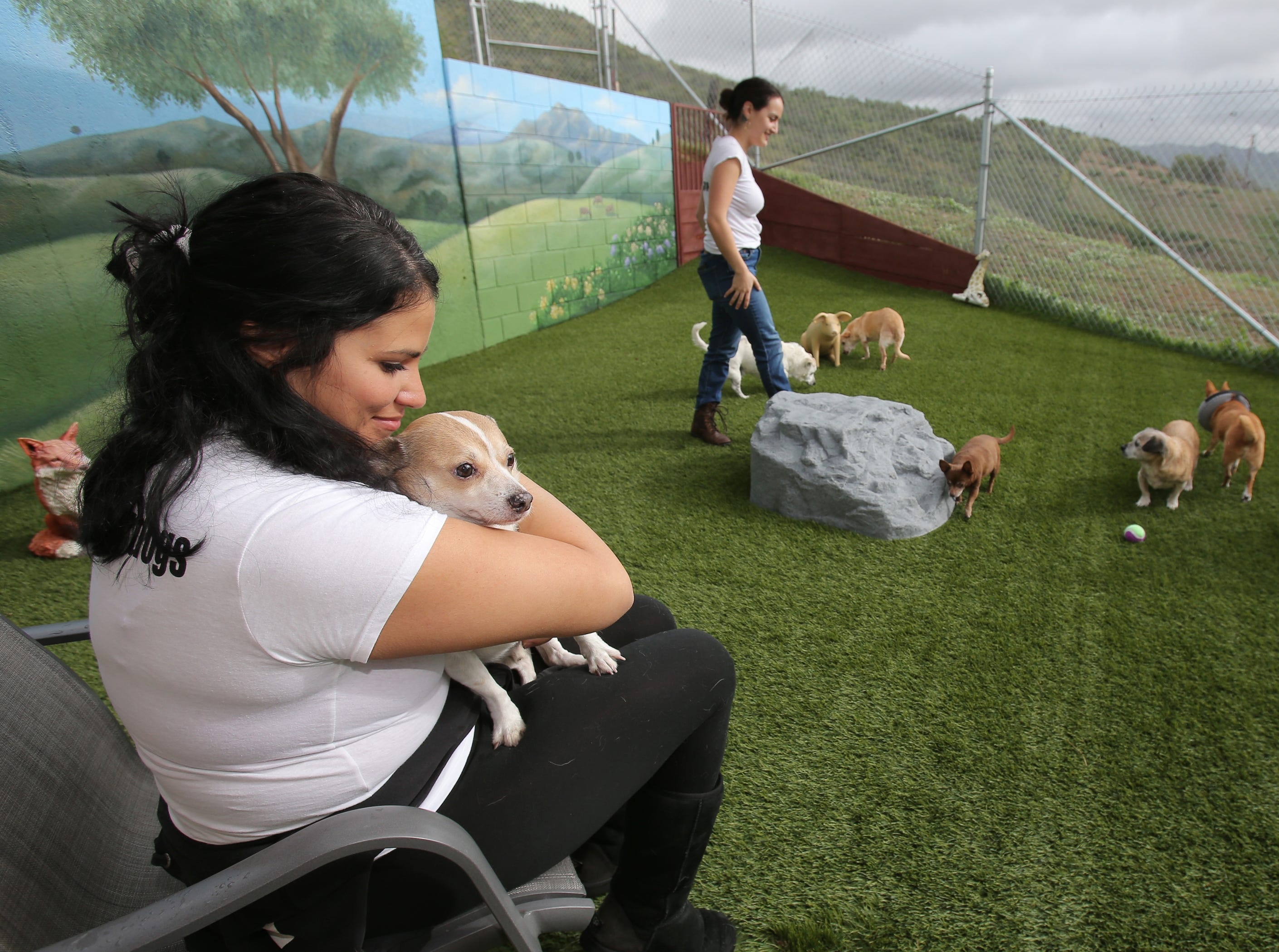 Patty Shumway, left, holds Maxie as Gabby Bonilla plays with some of the other dogs at the Wise Tails, a senior dog sanctuary in Simi Valley.