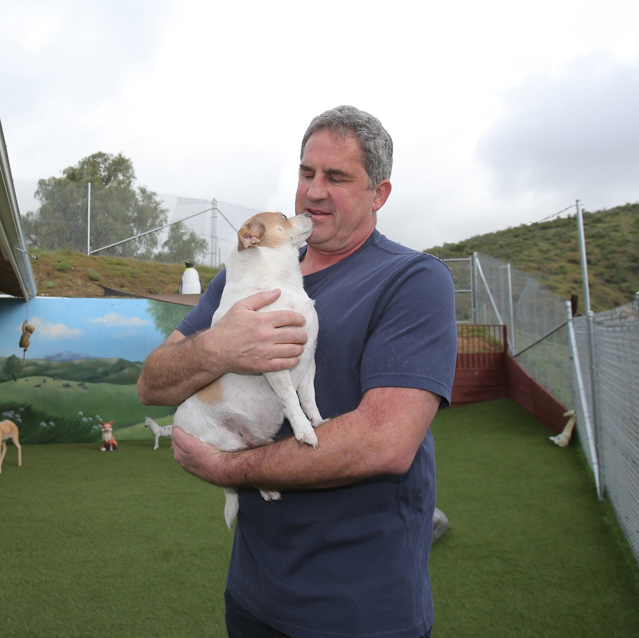 Sick, senior dogs find their 'forever home' at Simi Valley sanctuary