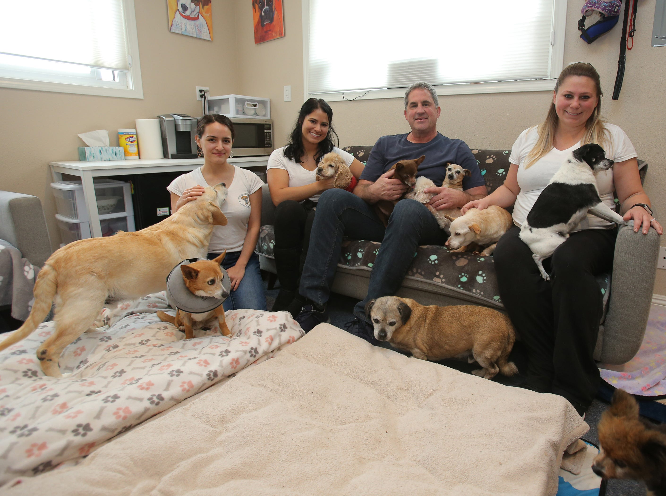 Gabby Bonilla, from left, Patty Shumway, Ted Shumway and Danielle Lady, all of Wise Tails, a senior dog sanctuary in Simi Valley, sit with some of their residents. The sanctuary is home to 20 senior dogs, most of them rescued from local animal shelters. The nonprofit is coming up on its first-year anniversary.