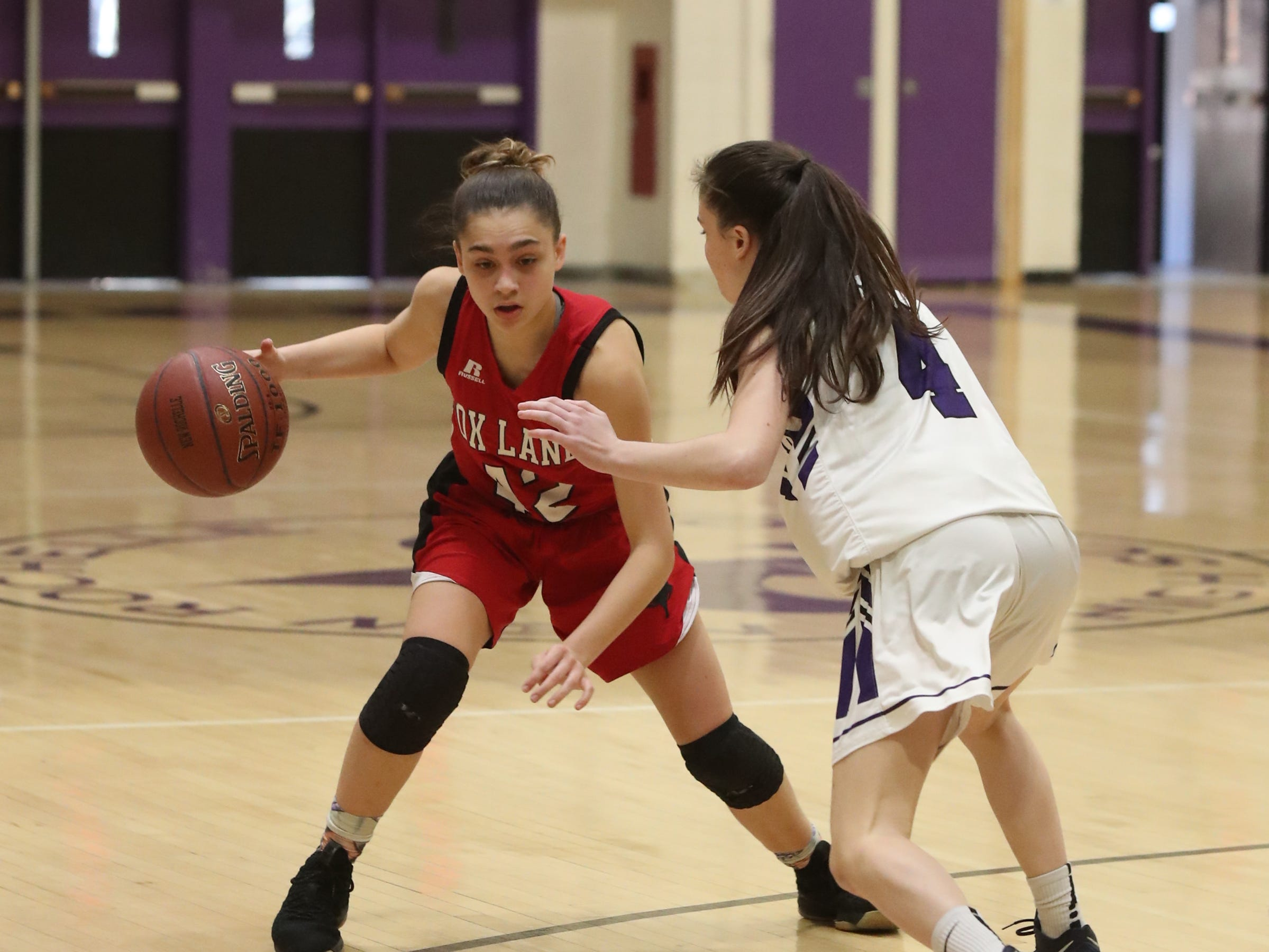 Fox Lane's Leah Figueroa (42) works the ball against New Rochelle's Nora Fitzgerald (4) in the class AA girls basketball outbracket game at New Rochelle High School in New Rochelle on Saturday, February 16, 2019.