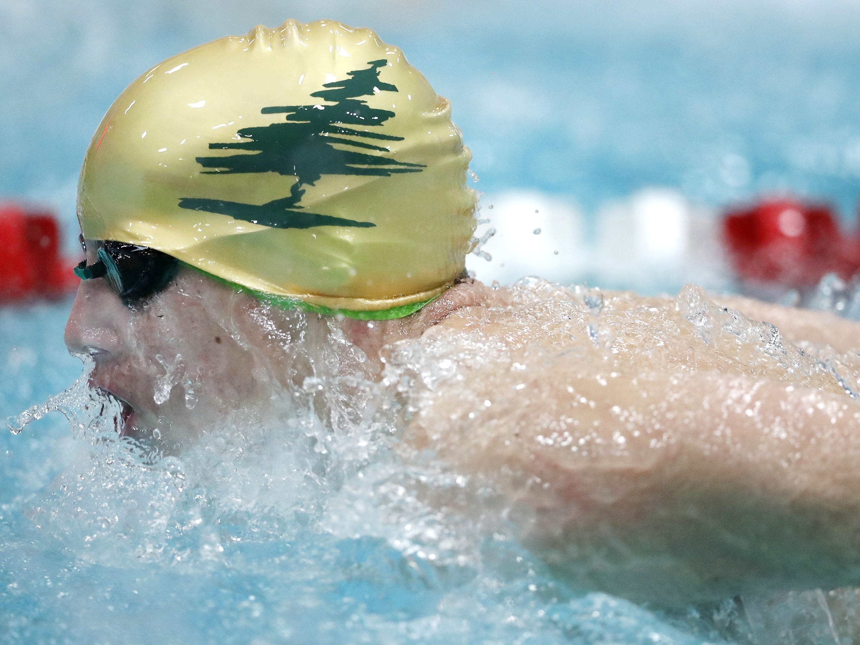 D.C. EverestÕs Ben Halambeck races in the 200 yard individual medley during the Division 1 2019 State Boys Swimming and Diving Championships Saturday, Feb. 16, 2019, at the UW Natatorium in Madison, Wis. Danny Damiani/USA TODAY NETWORK-Wisconsin