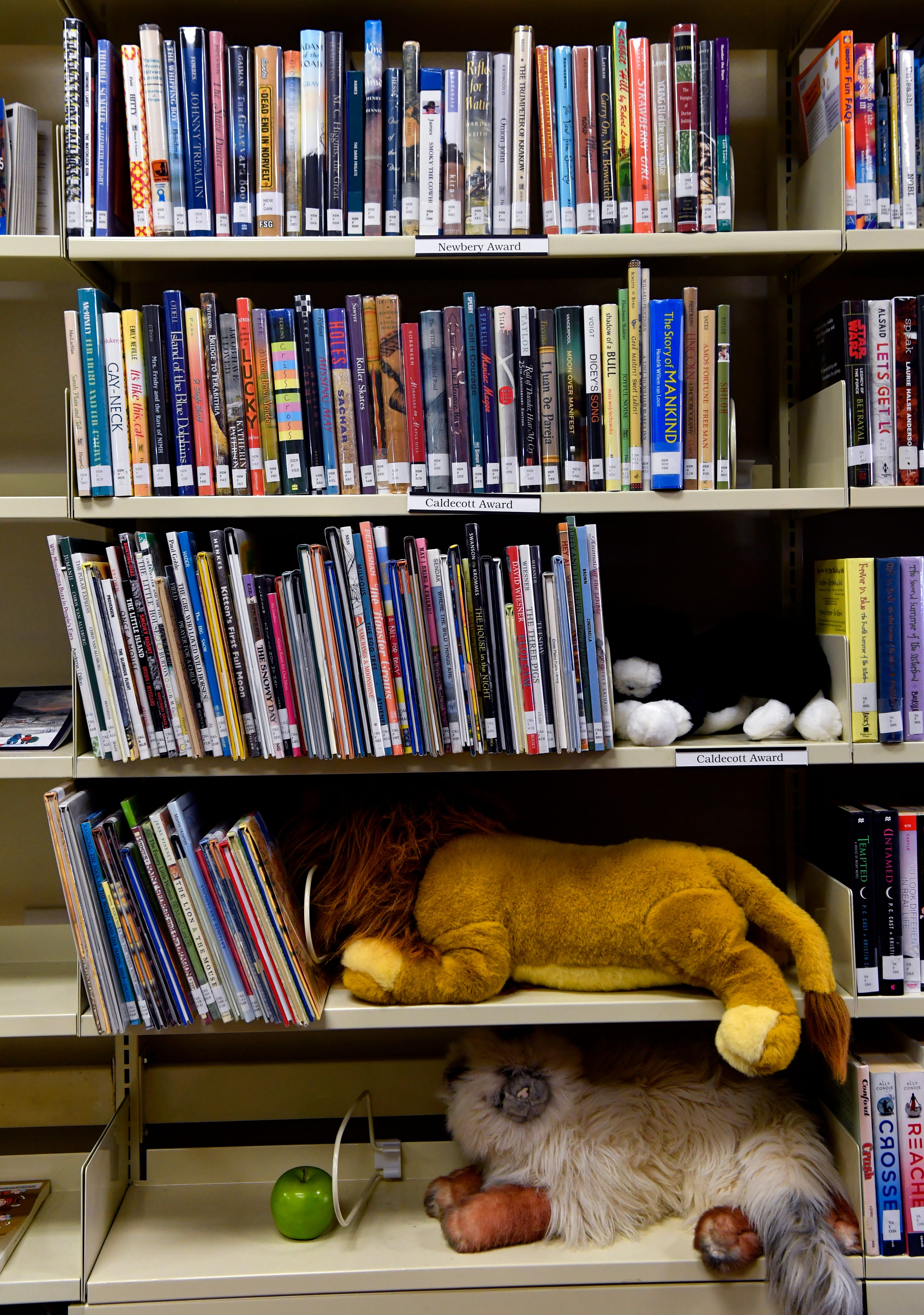 Plush toys share shelving space with children's books at the Cross Plains Public Library.