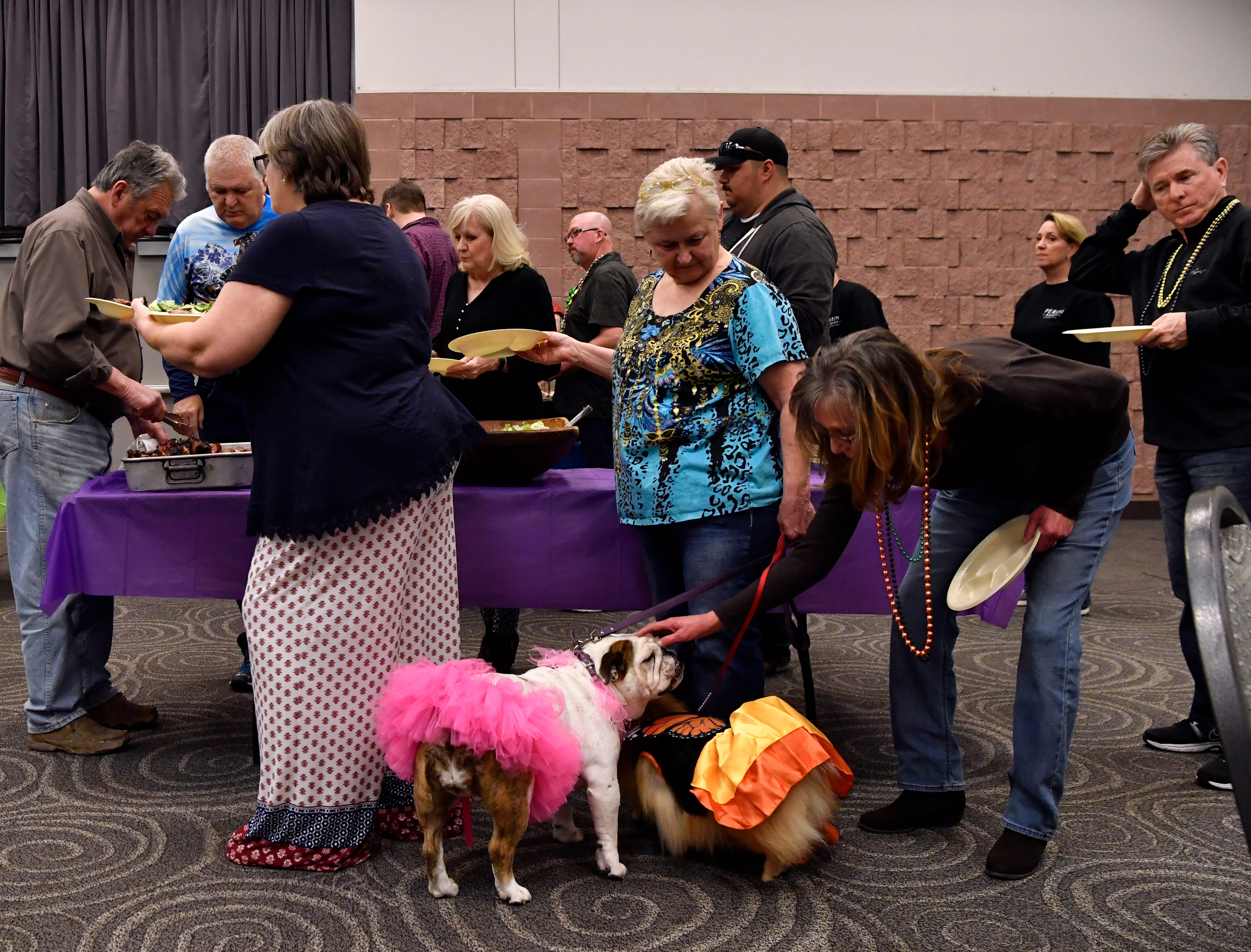 Christi Baird pets Miss Brindle Britches, an English bulldog, belonging to Sandy Rogers, while waiting in line for barbecue during Saturday's Fur Ball.