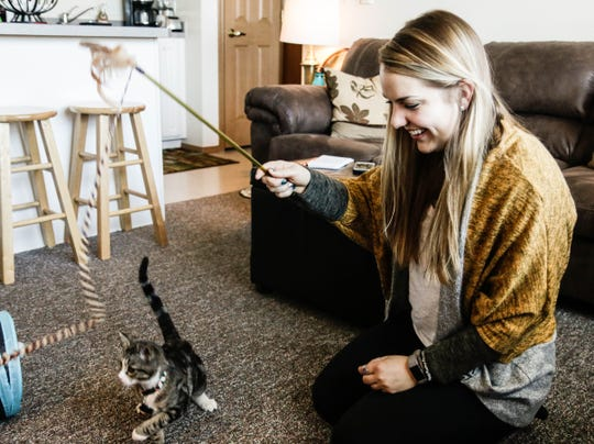 McKenna Fromm plays with her kitten, Willy, in her Bozeman apartment. She will graduate from Montana State University in May with a degree in psychology.