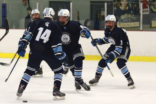 Livonia Stevenson celebrates a goal by Adam Hillebrand (14) in a 5-2 victory over Hartland on Saturday, Feb. 16, 2019.