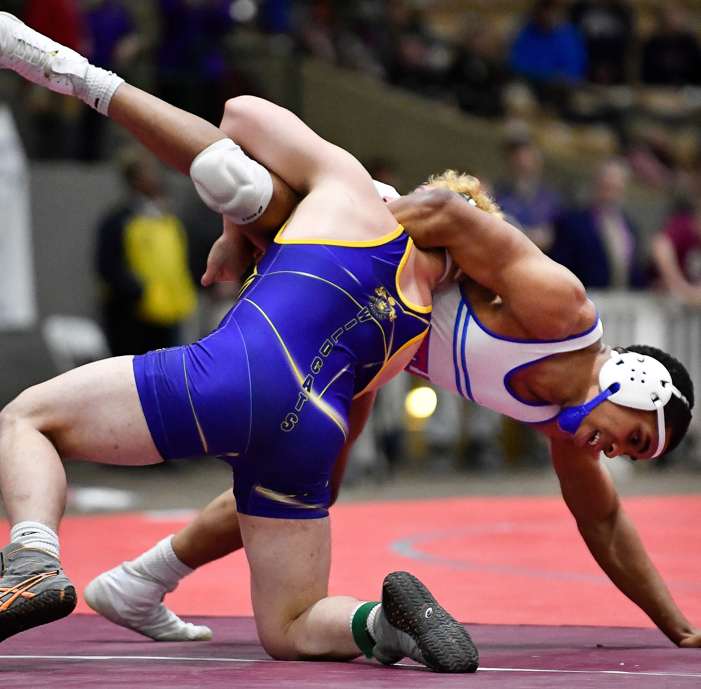 Meet the TSSAA individual wrestling state champions in all four classifications