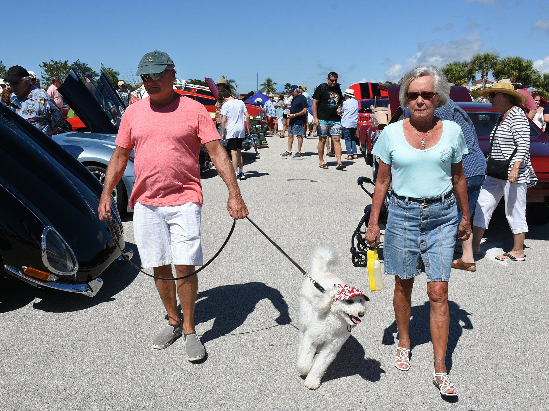 Dennis and Gloria Kin brought Wheeler, their golden doodle, to see the wheels. The annual Kiwanis car show brought 170 collectible cars and thousands of car enthusiasts to Veterans Community Park on Marco Island Sunday.