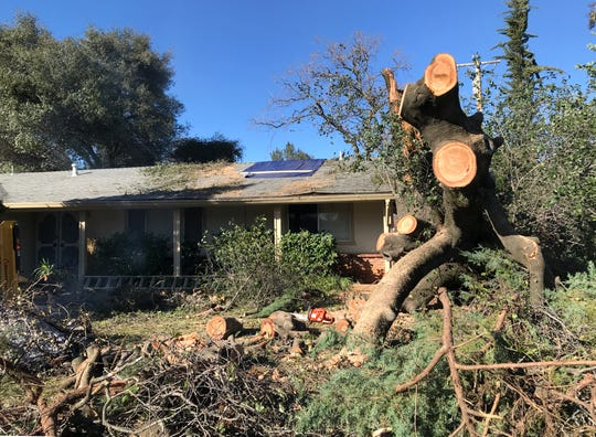 A fallen tree lies in sawed-up pieces Saturday at the home of Amaris Gemoya of Redding. The tree crashed into her Estate Street home and into the roadway early Wednesday during the snowstorm.
